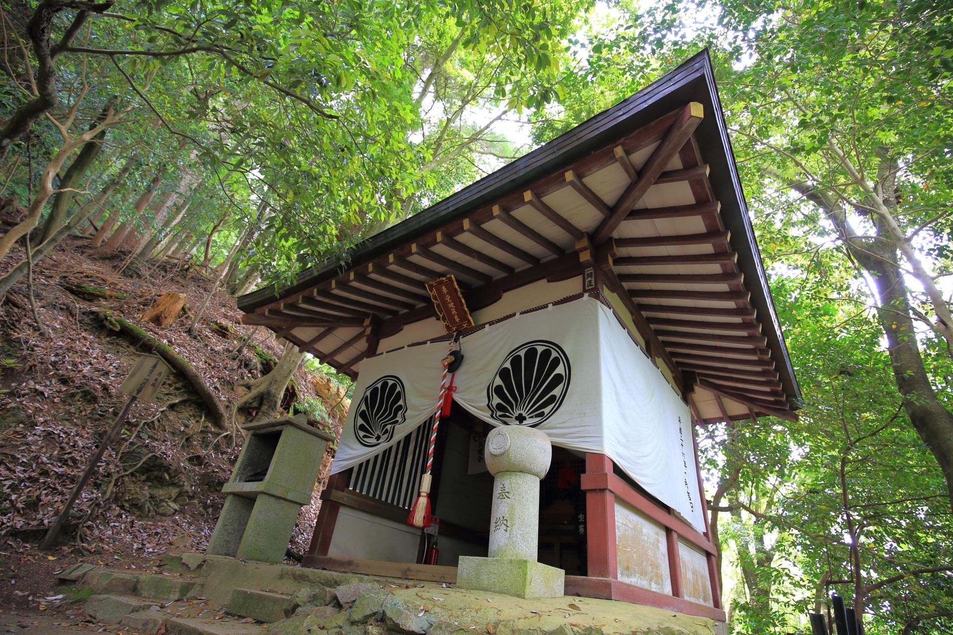 鞍馬山の素晴らしい木の根道や自然の情景やお堂