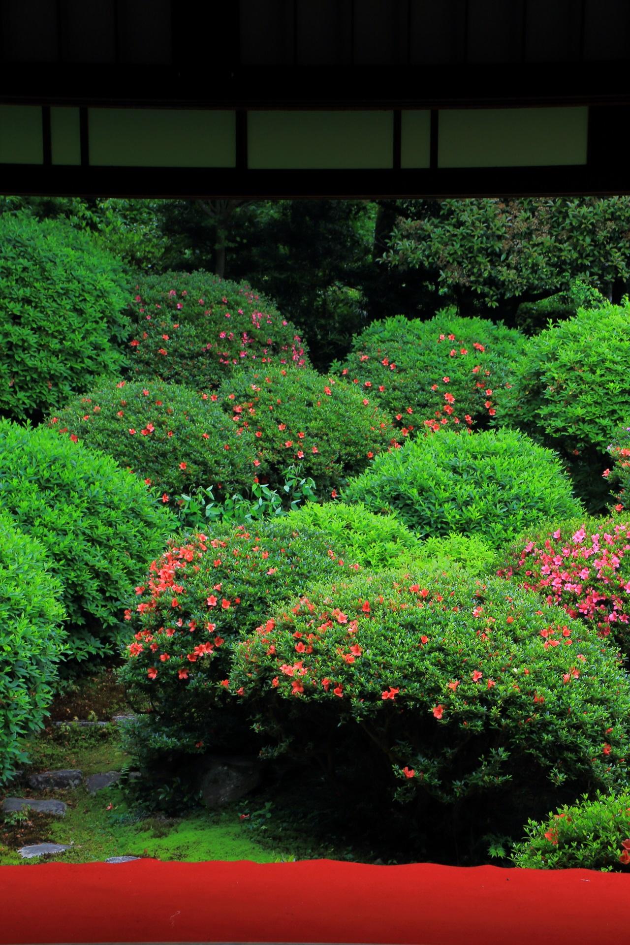 庭園を演出する縁側の赤い絨毯とコントラスト