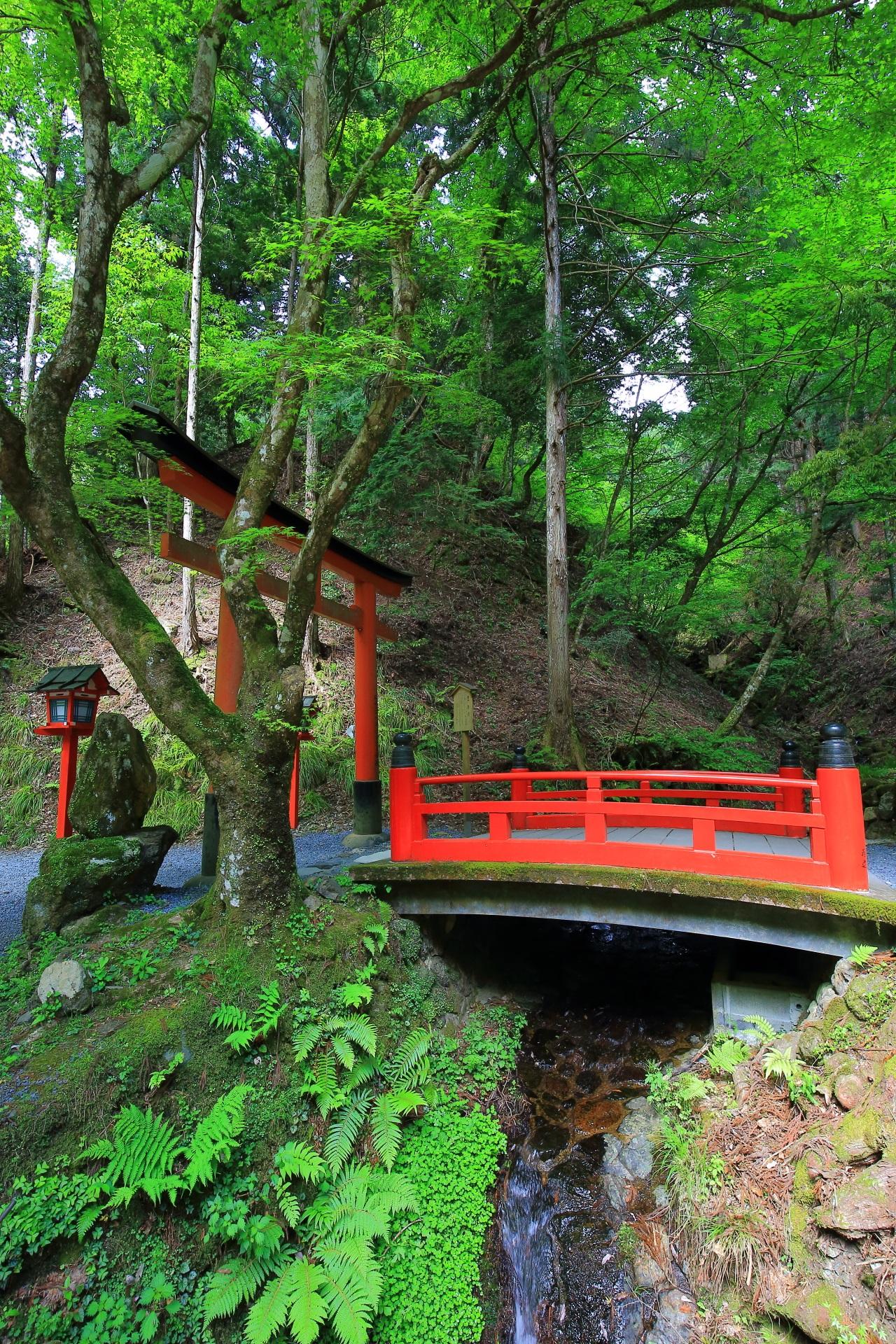 貴船神社の思ひ川と思ひ橋