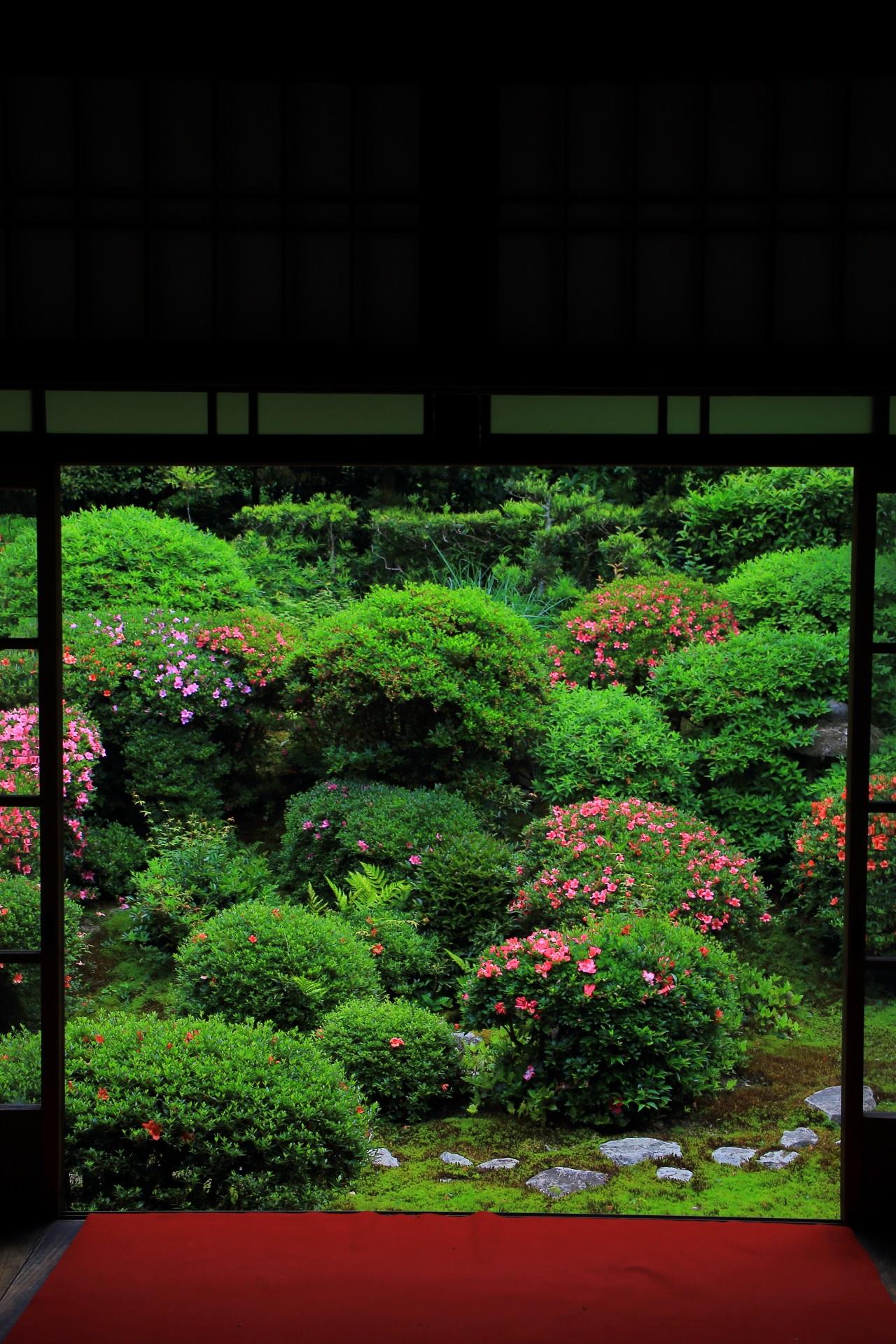 安楽寺の素晴らしいサツキと緑と春の情景