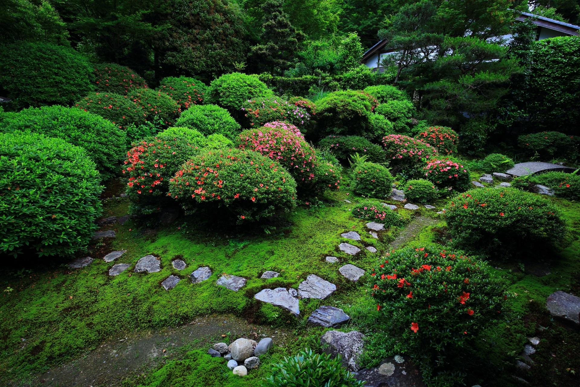 美しい苔と飛び石と広がる素晴らしい緑の庭園