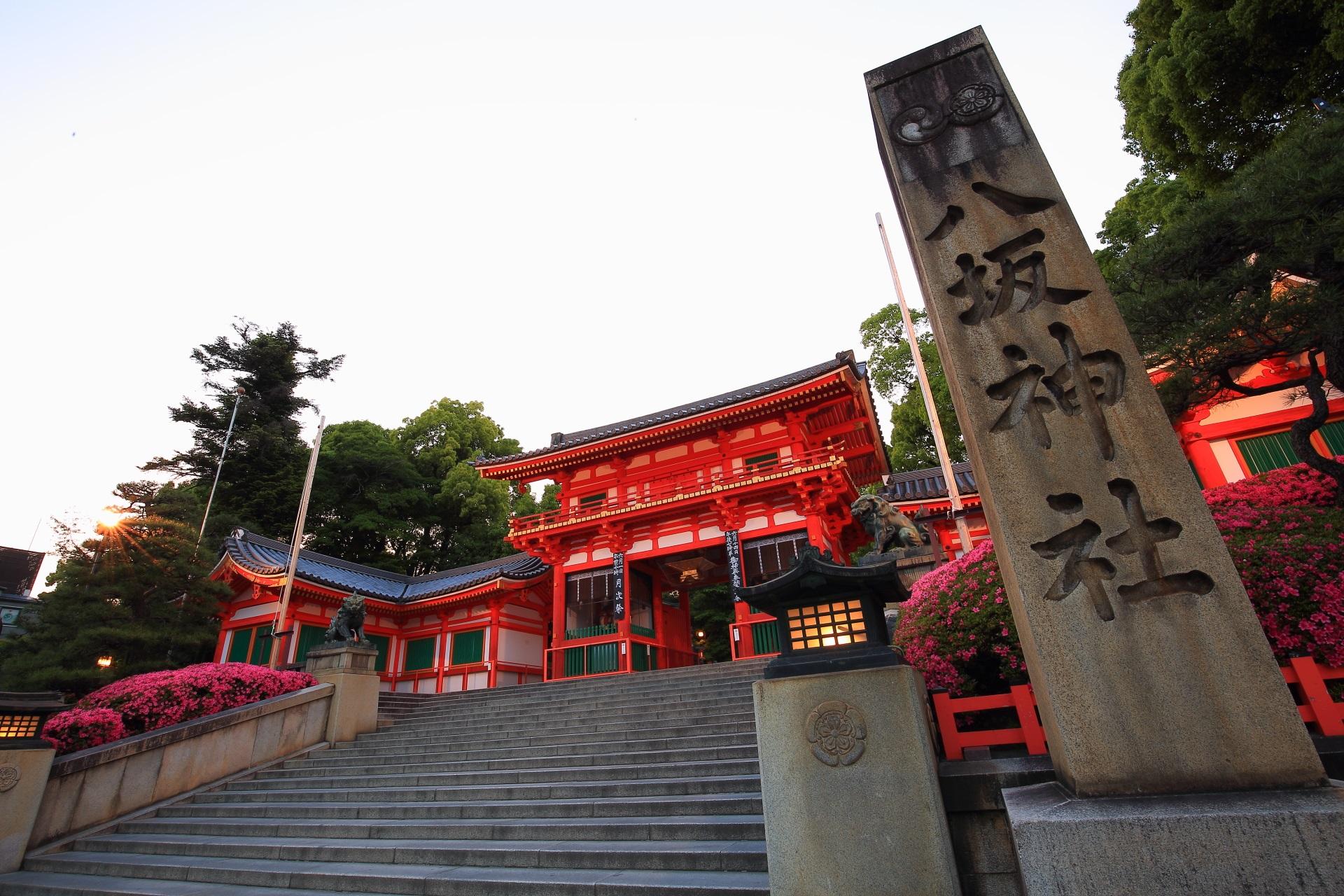 この時期に来て初めて知るサツキの名所の八坂神社