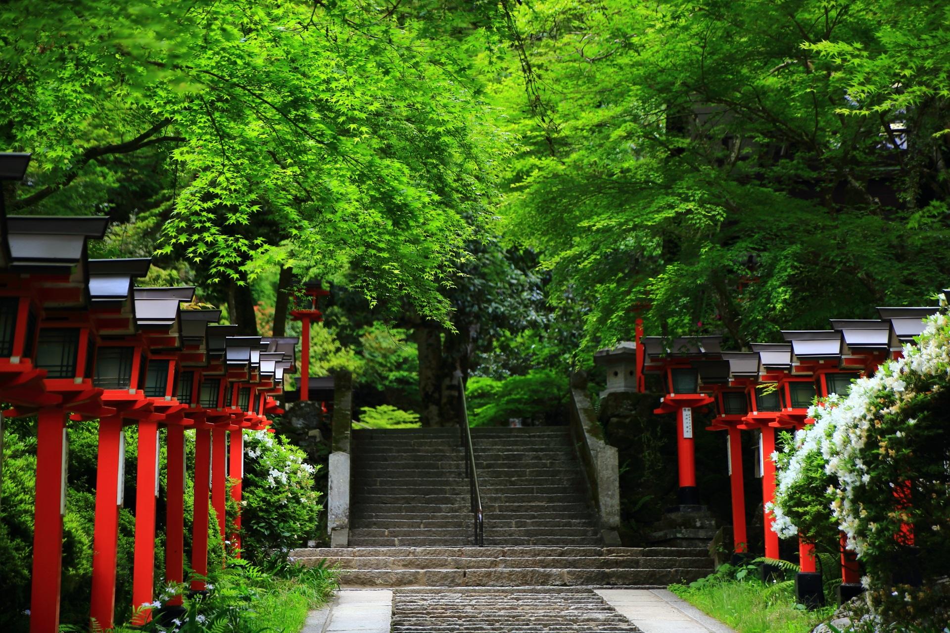 鞍馬寺の赤い灯籠が並ぶ参道と新緑