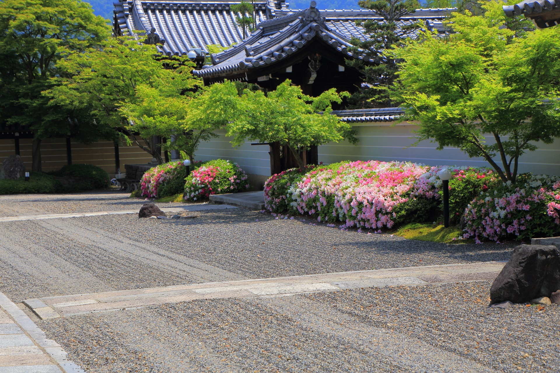 緑も砂も綺麗で風情がある妙満寺の本堂前の参道両脇のツツジ