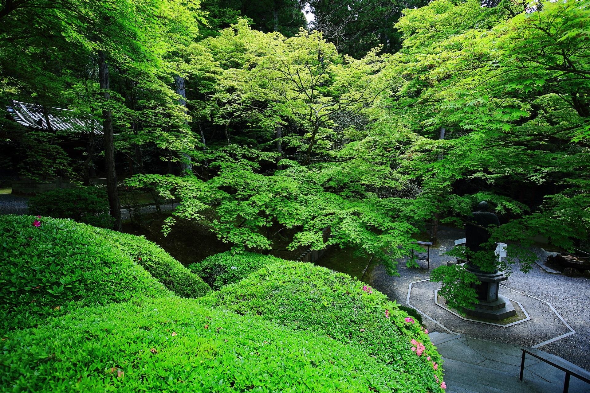 今熊野観音寺 新緑 広がる深い緑と春の情景