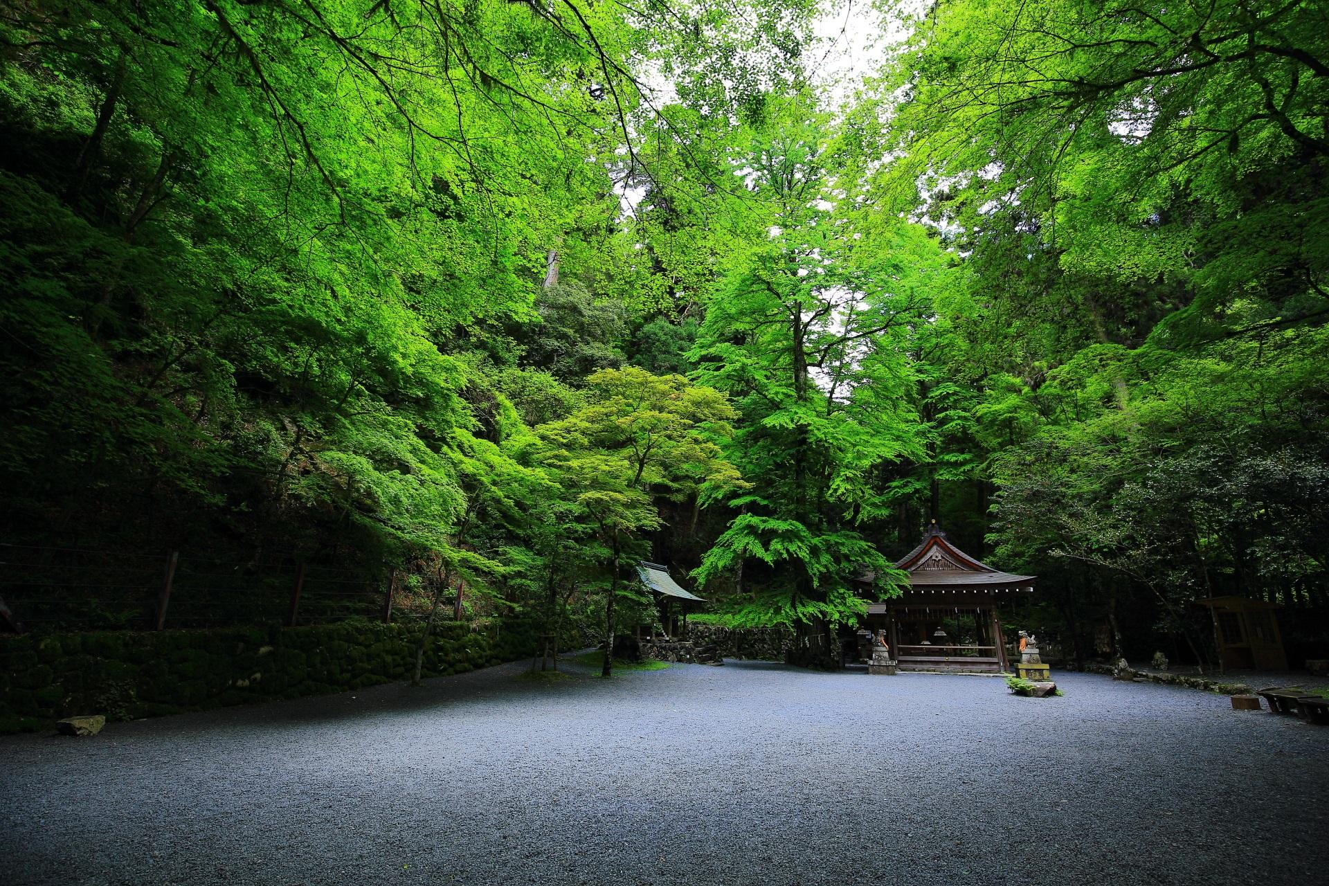 緑に彩られた貴船神社