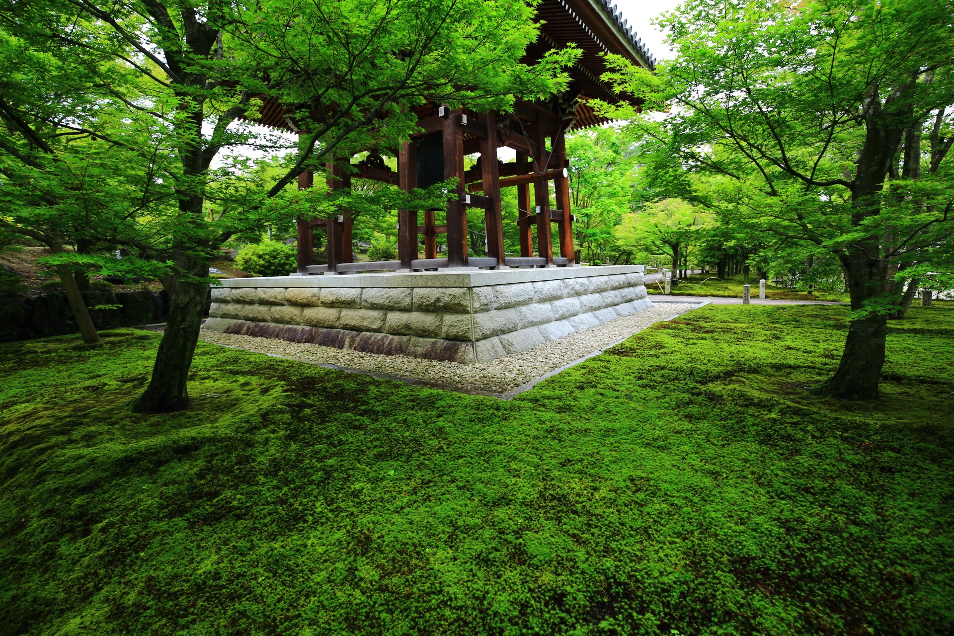 Kyoto Chisyaku-in Temple green and moss