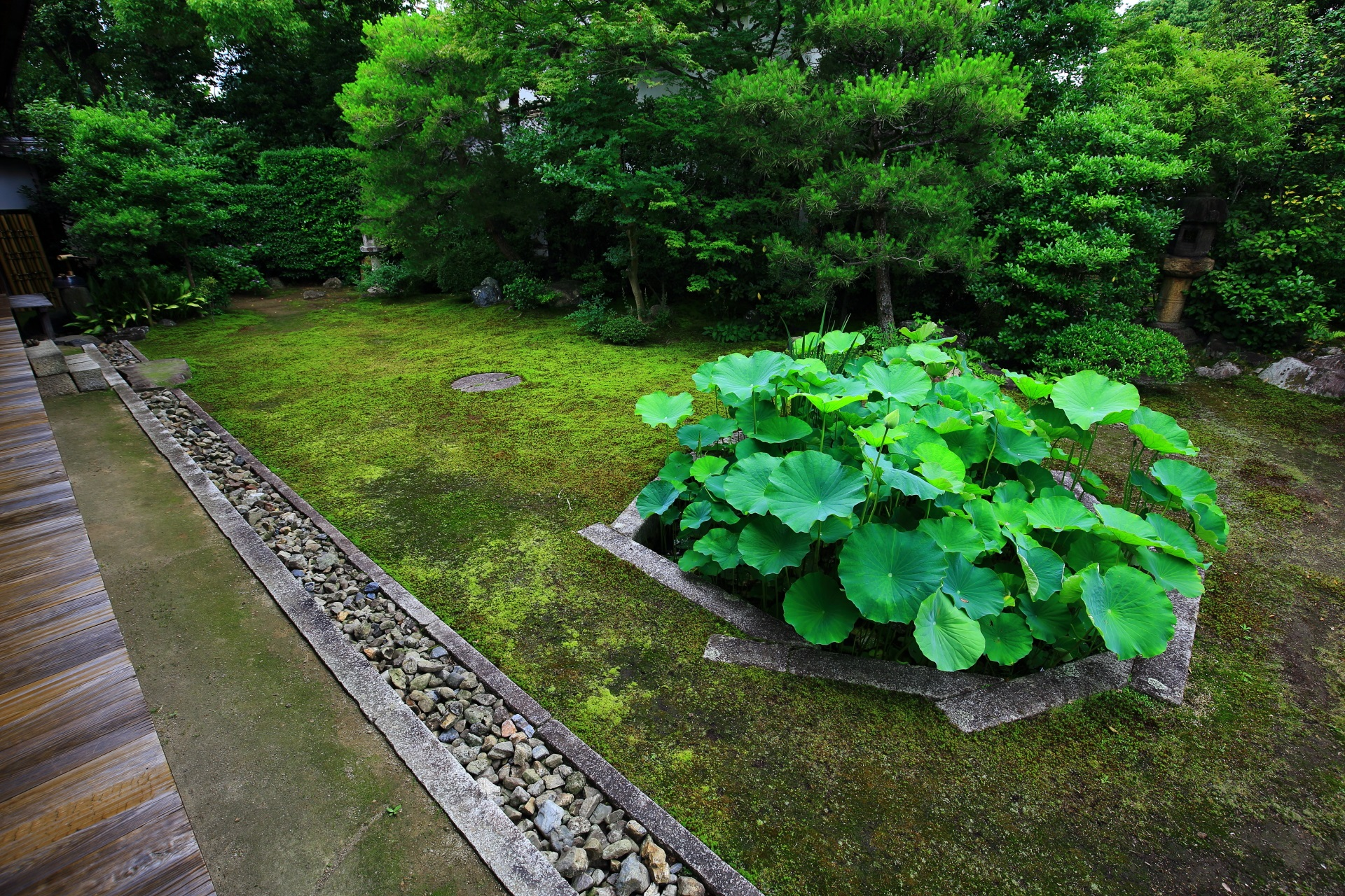 A garden called Tomoenoniwa in Honpoji-Temple in Kyoto,Japan