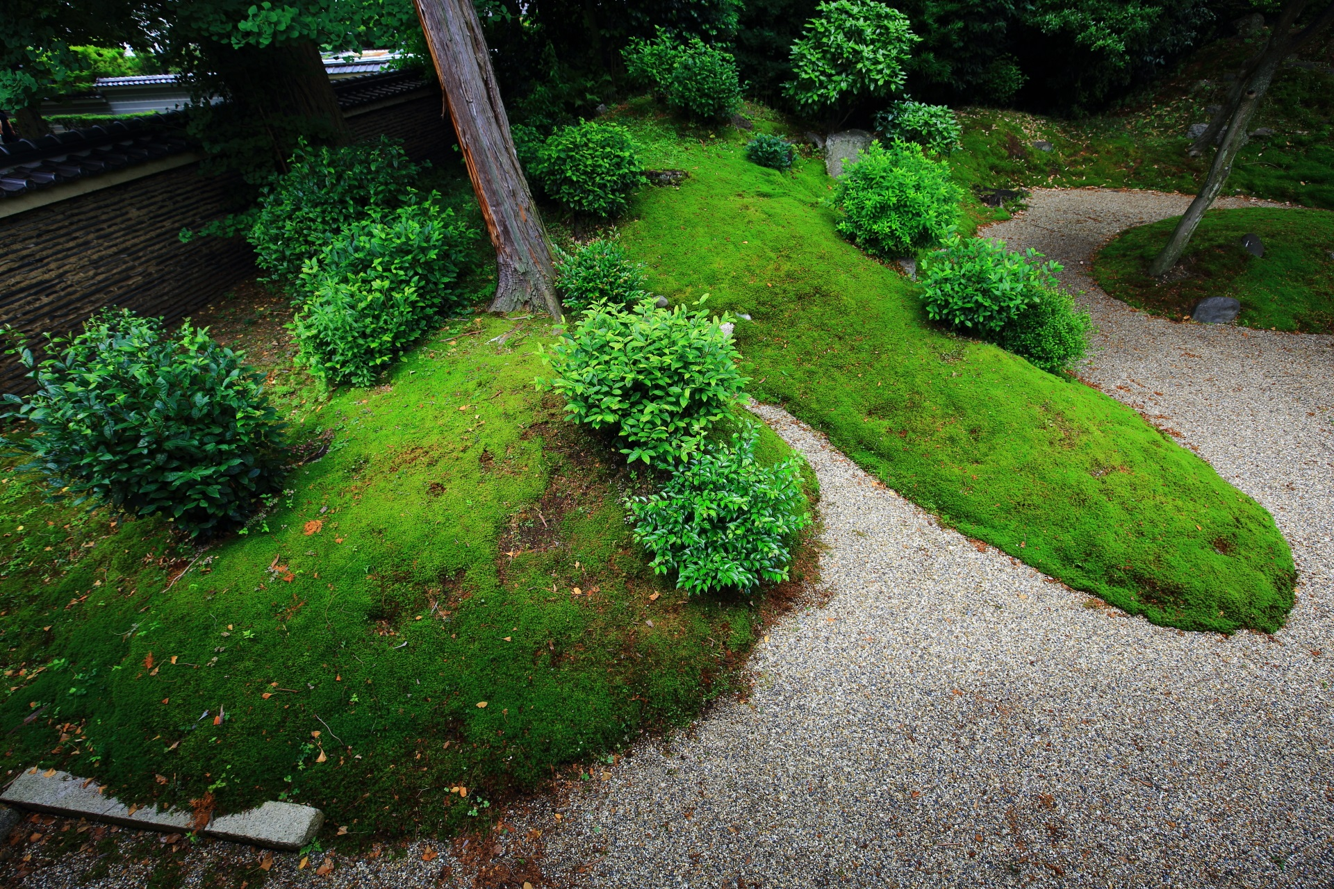 Beautiful garden of moss and white sand of Ryuhonji-Temple in Kyoto
