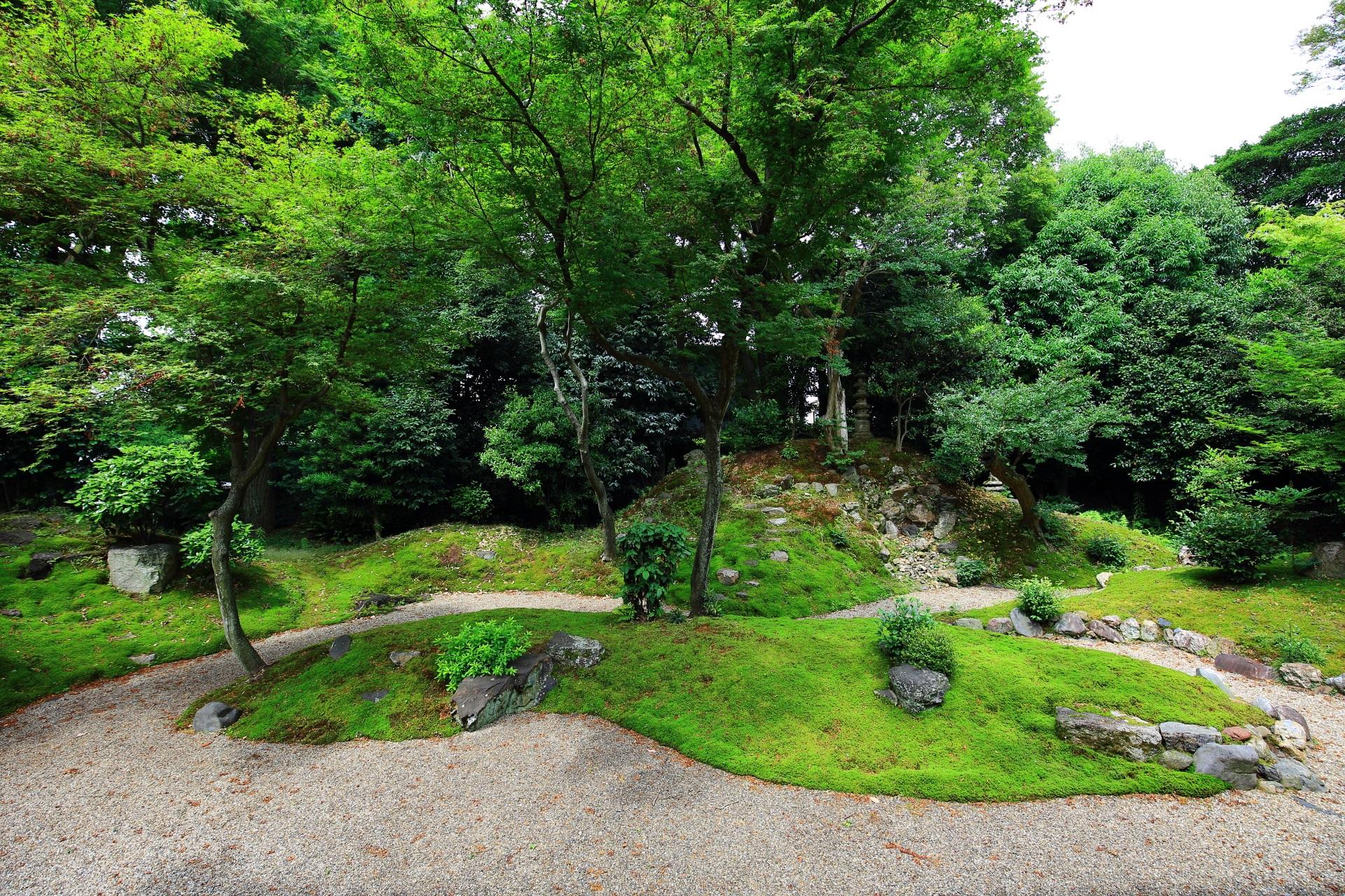 立本寺の龍華苑(りゅうげえん)