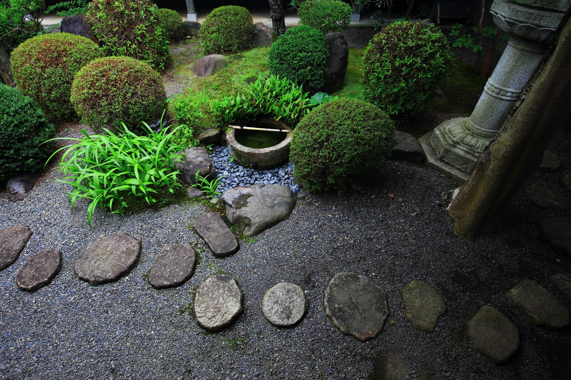 妙蓮寺の中庭