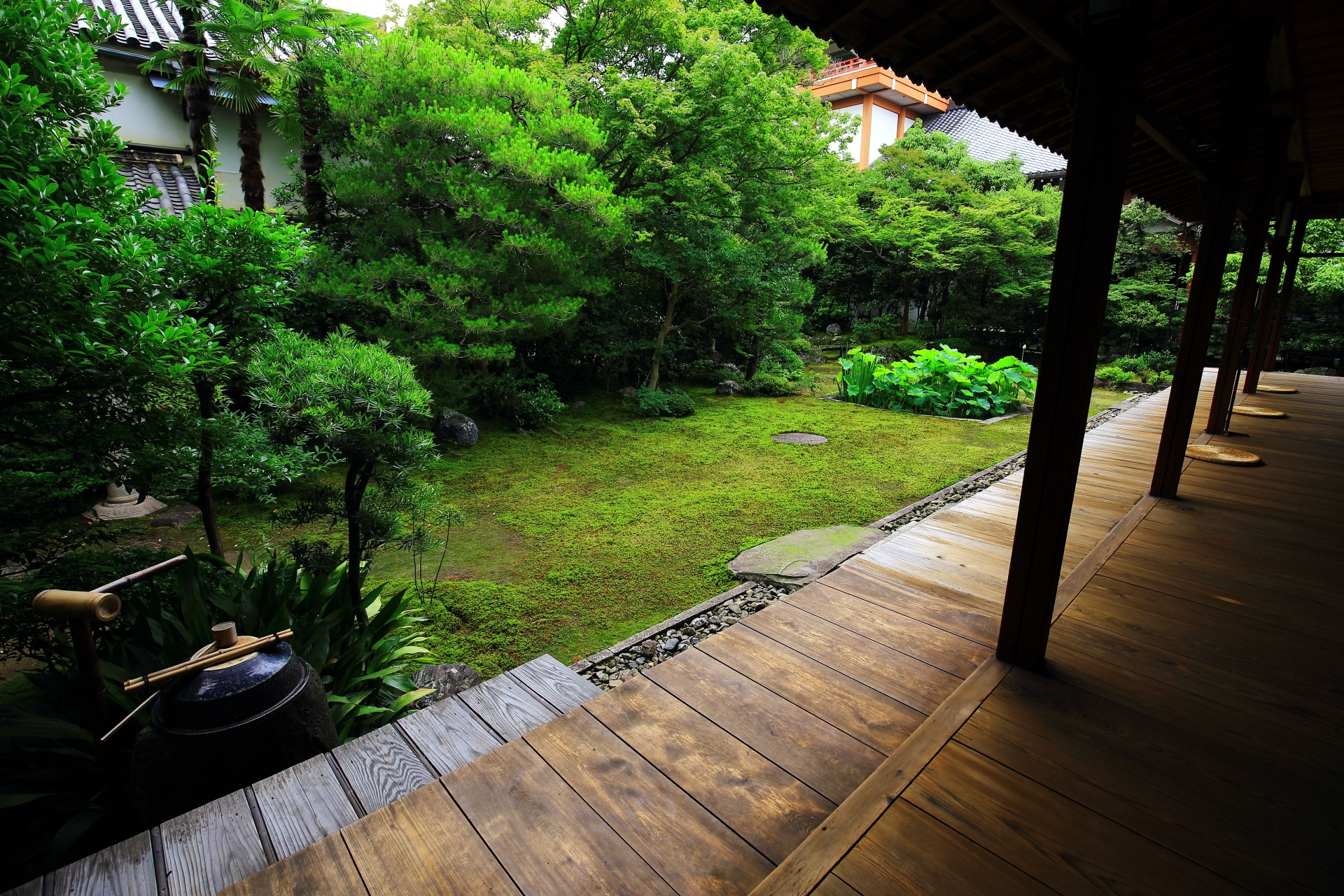 緑につつまれた美しい三つ巴の庭
