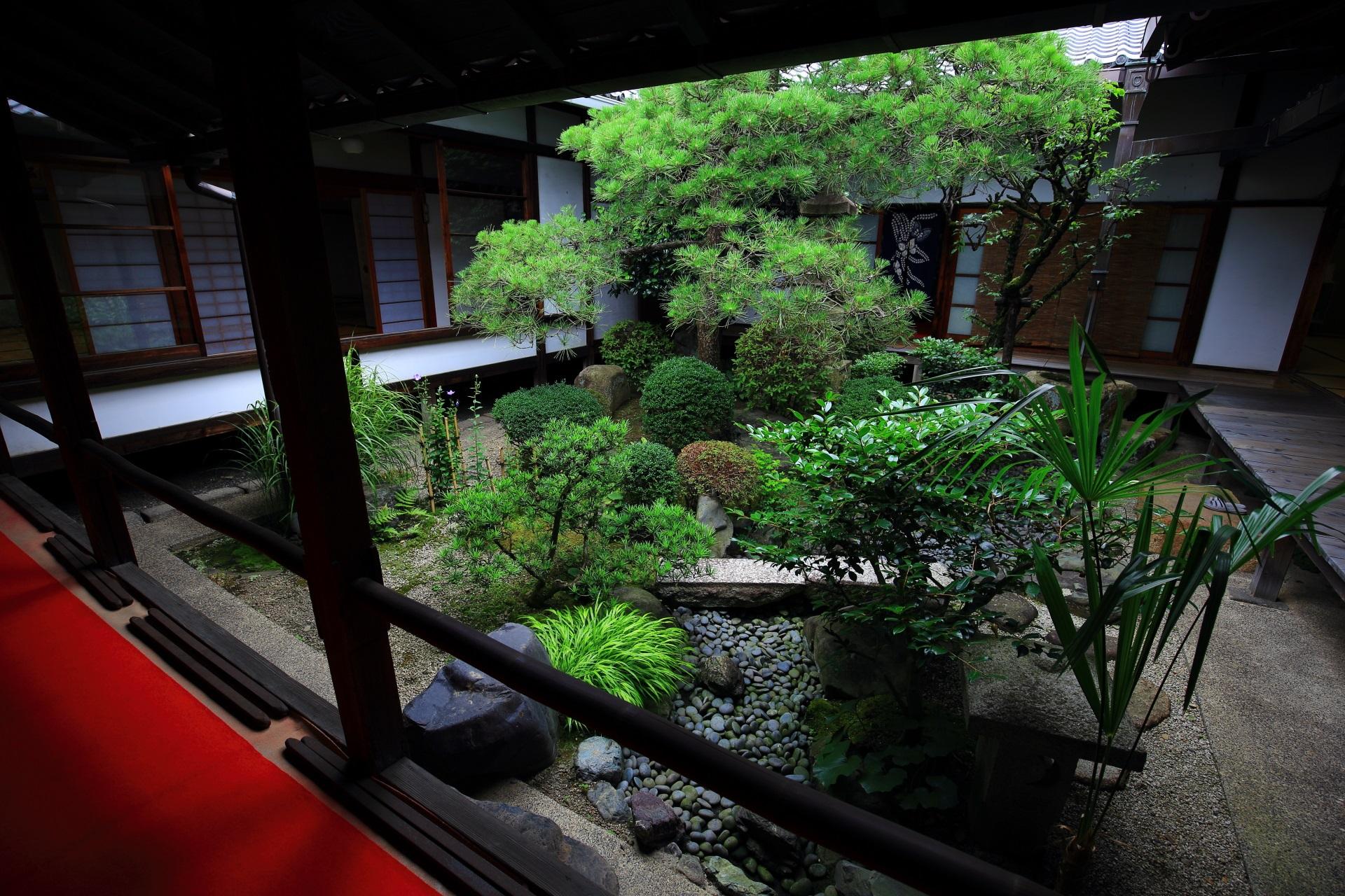 妙蓮寺の坪庭
