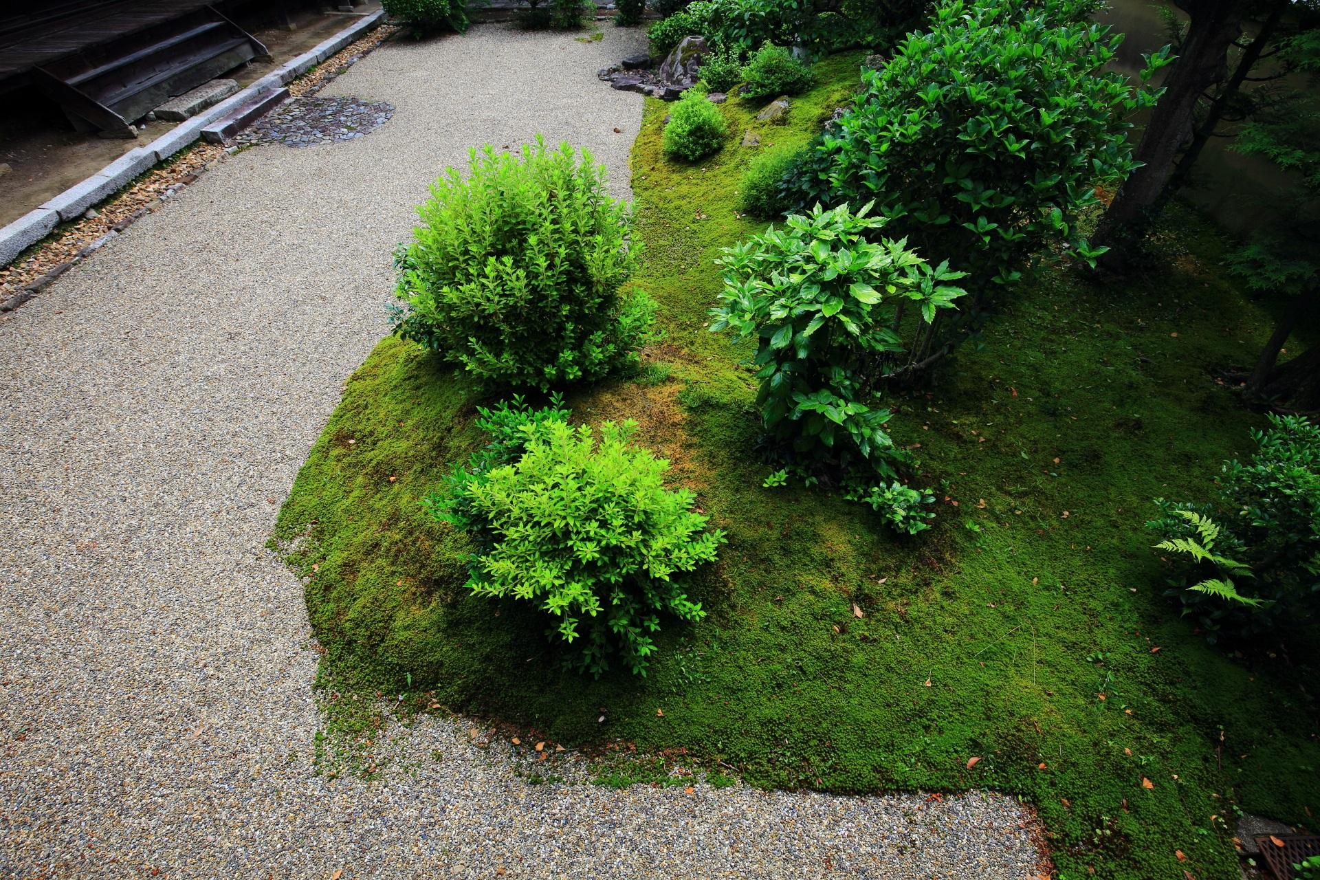 苔や緑につつまれた立本寺(りゅうほんじ)