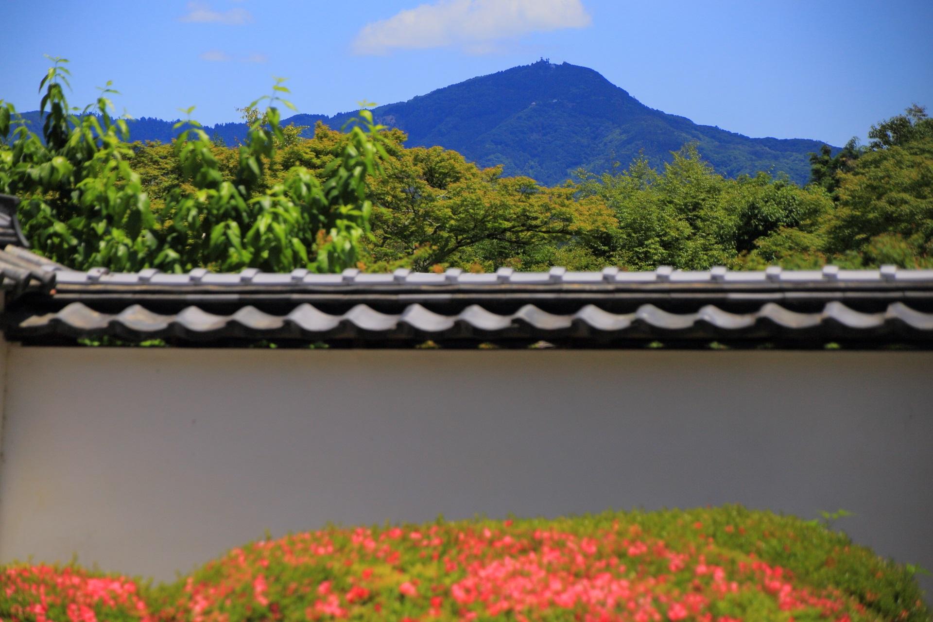 天気が良いのでくっきり見える正伝寺から眺める比叡山