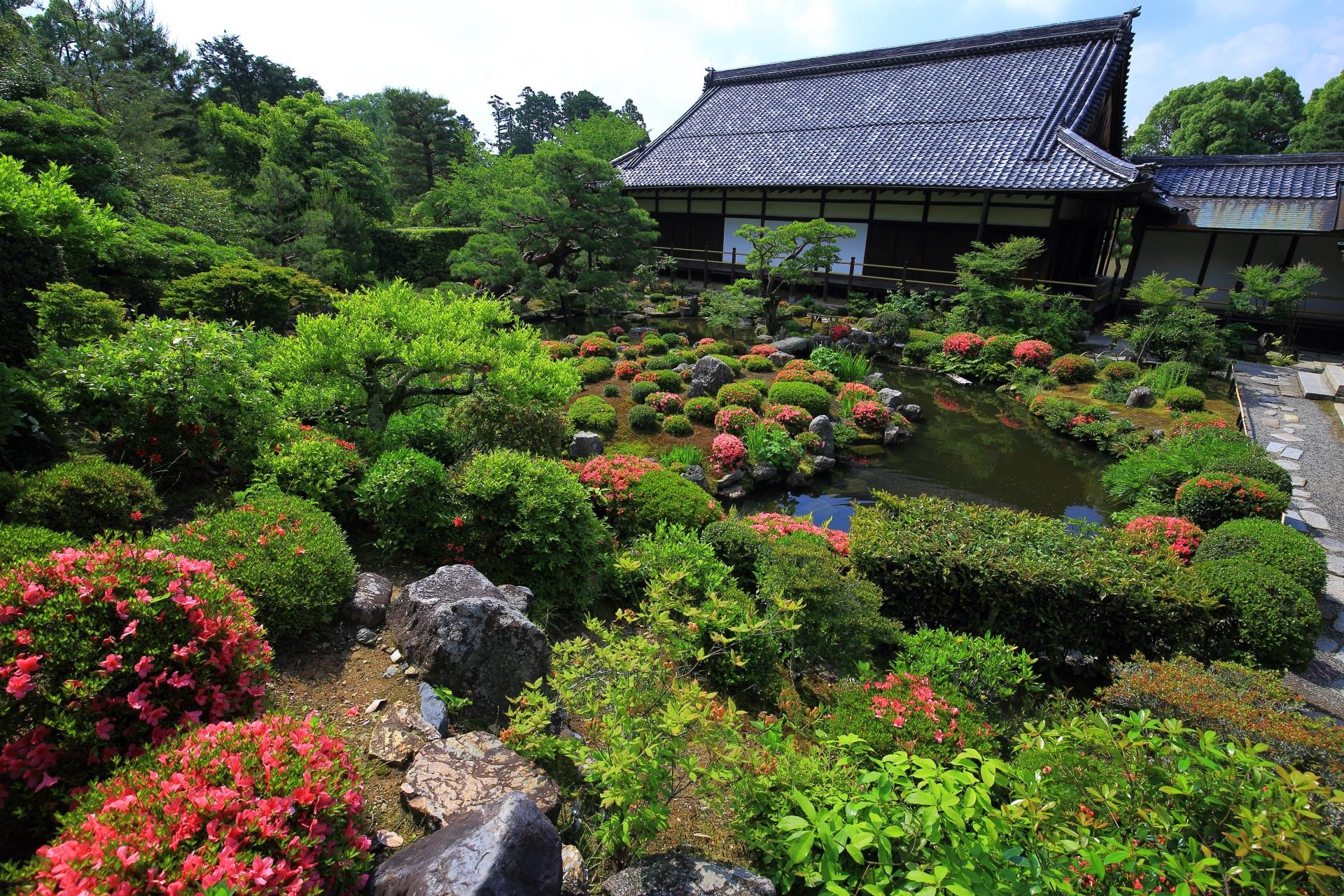 茶室「清漣亭」側から眺めた芙蓉池と大きな方丈