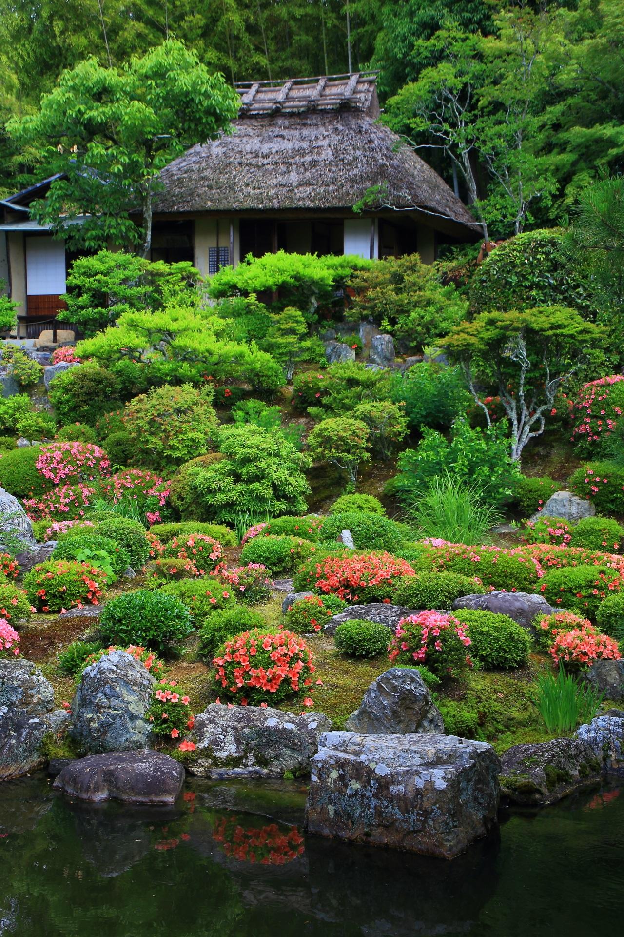 緑とピンクや朱色の色合いが綺麗な芙蓉池と清漣亭とサツキ