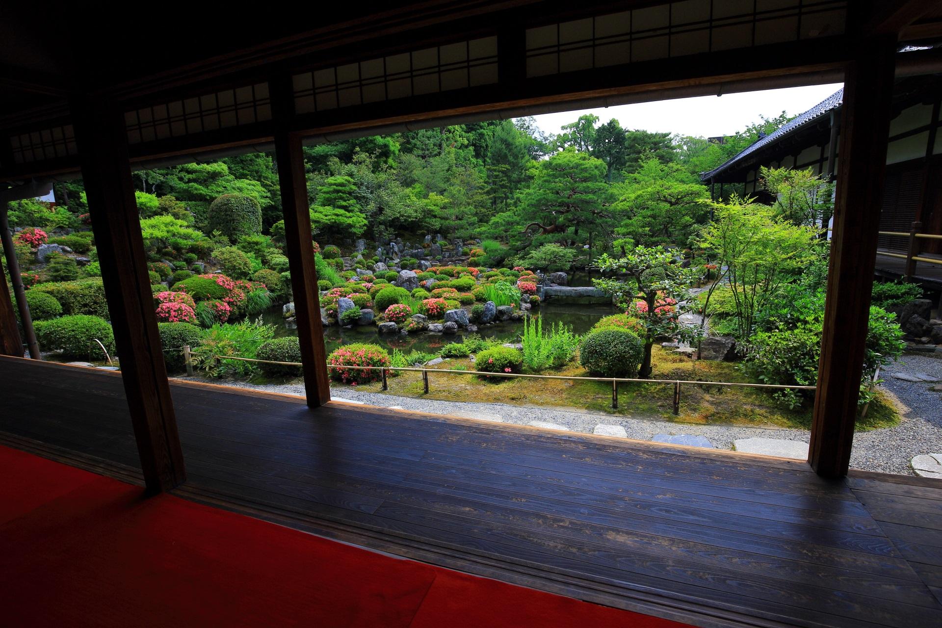 等持院の書院から眺めたサツキの芙蓉池