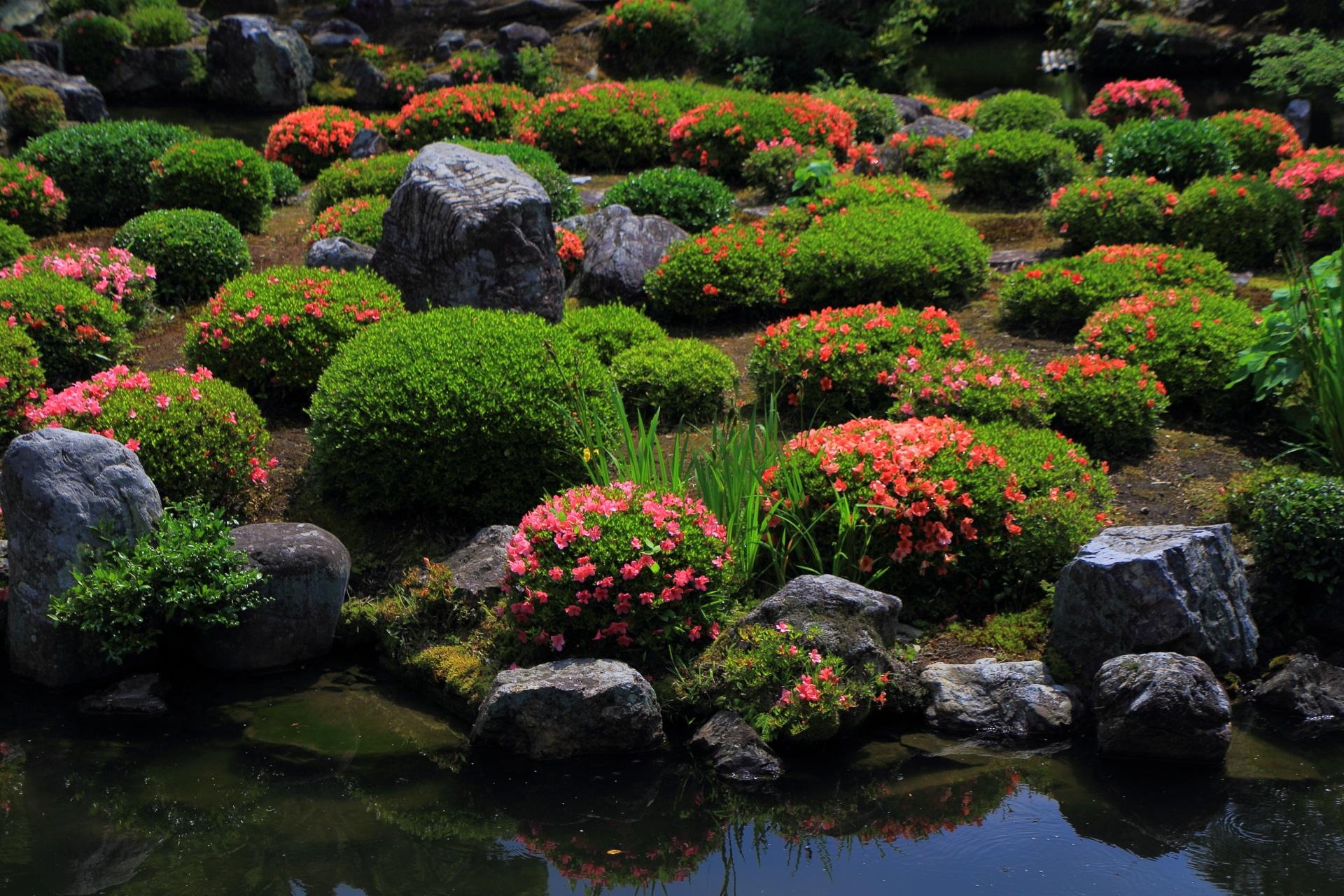 芙蓉池の真ん中の島の「蓬莱島」のサツキや岩