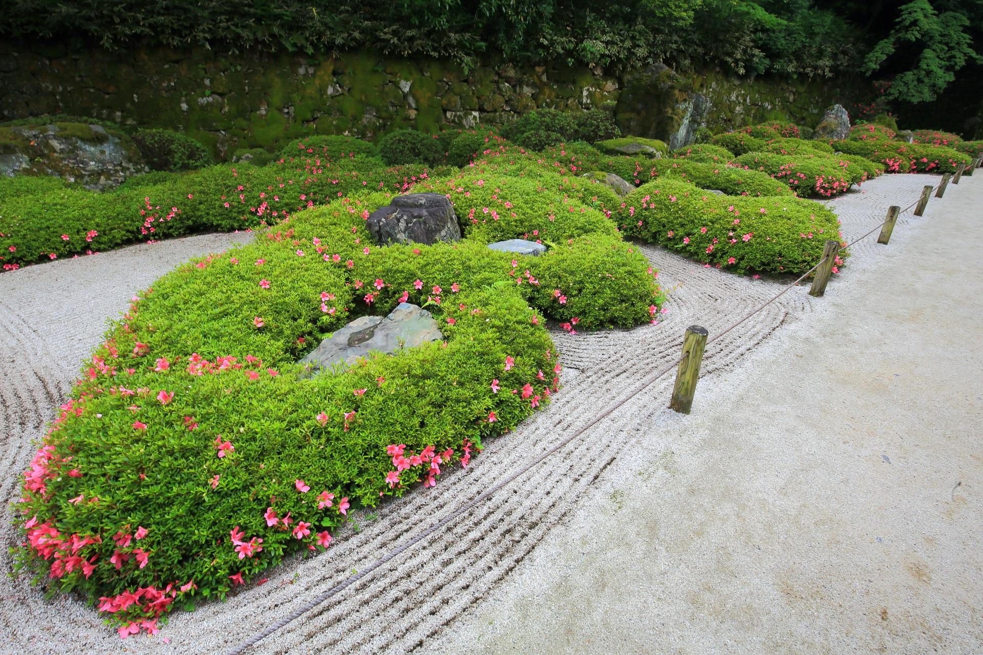 何だか生き物や龍のようにも見えてくる二十五菩薩の庭
