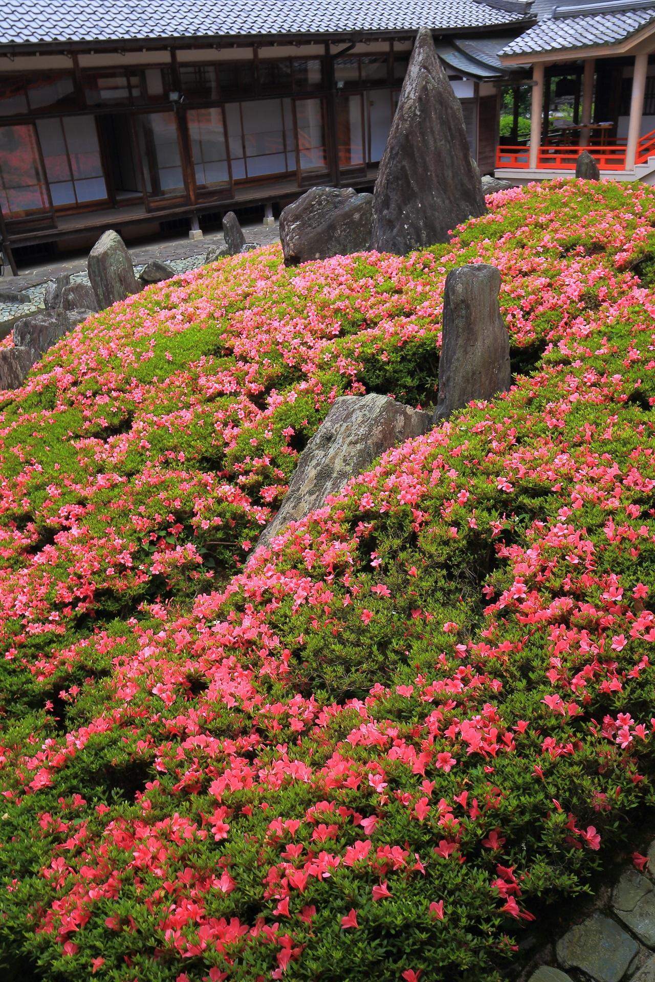 力強い岩も印象的な庭園の緑とピンクの綺麗なコントラスト