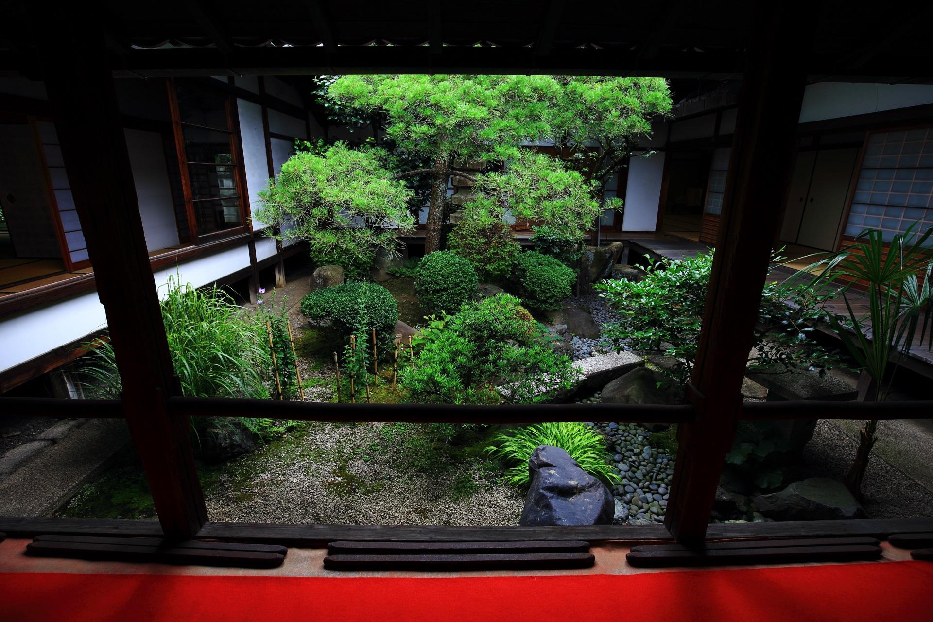 回廊から眺めた妙蓮寺の中庭