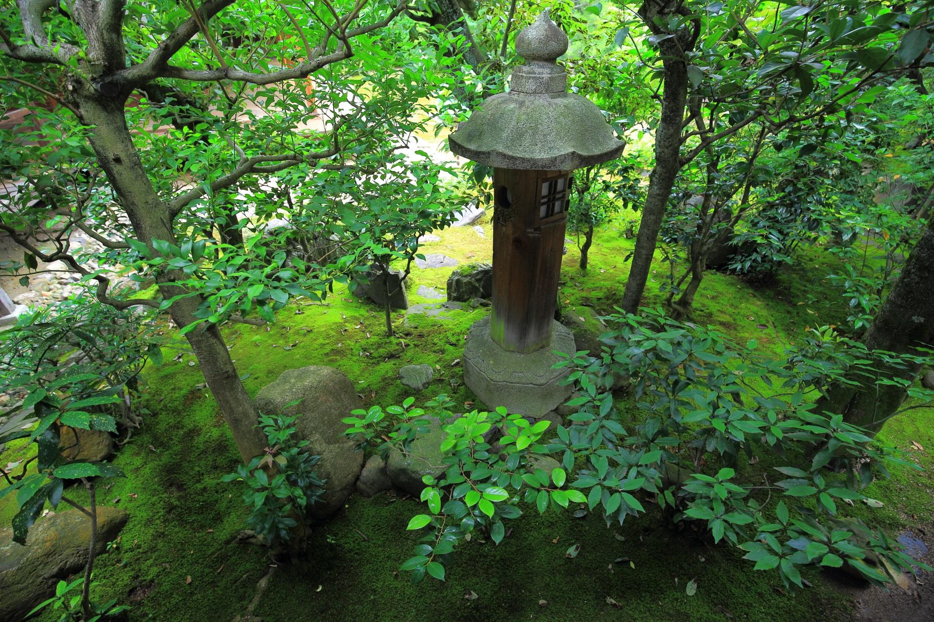 本法寺の緑につつまれた木の燈籠