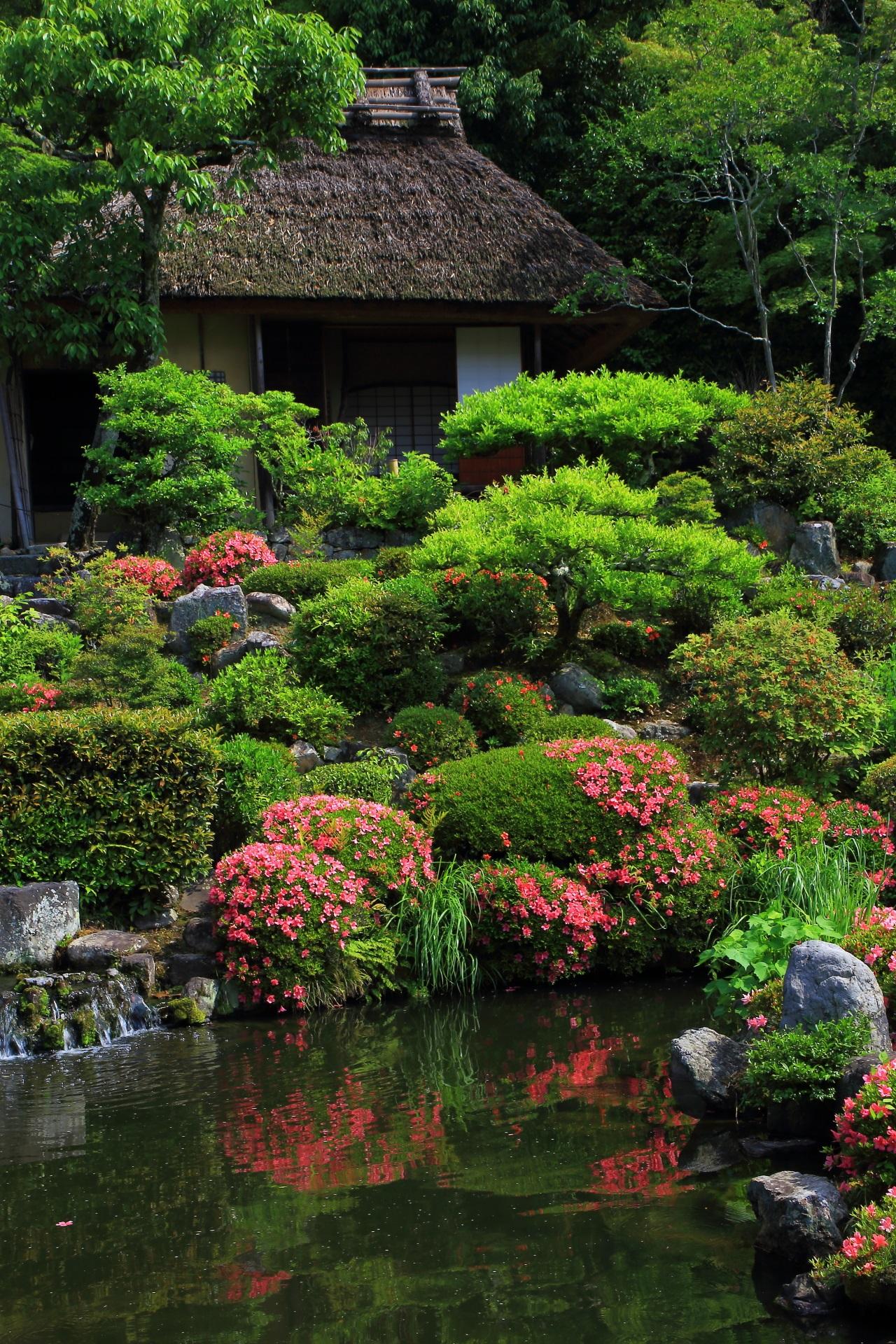 清漣亭(せいれんてい)とサツキの風情ある春の情景