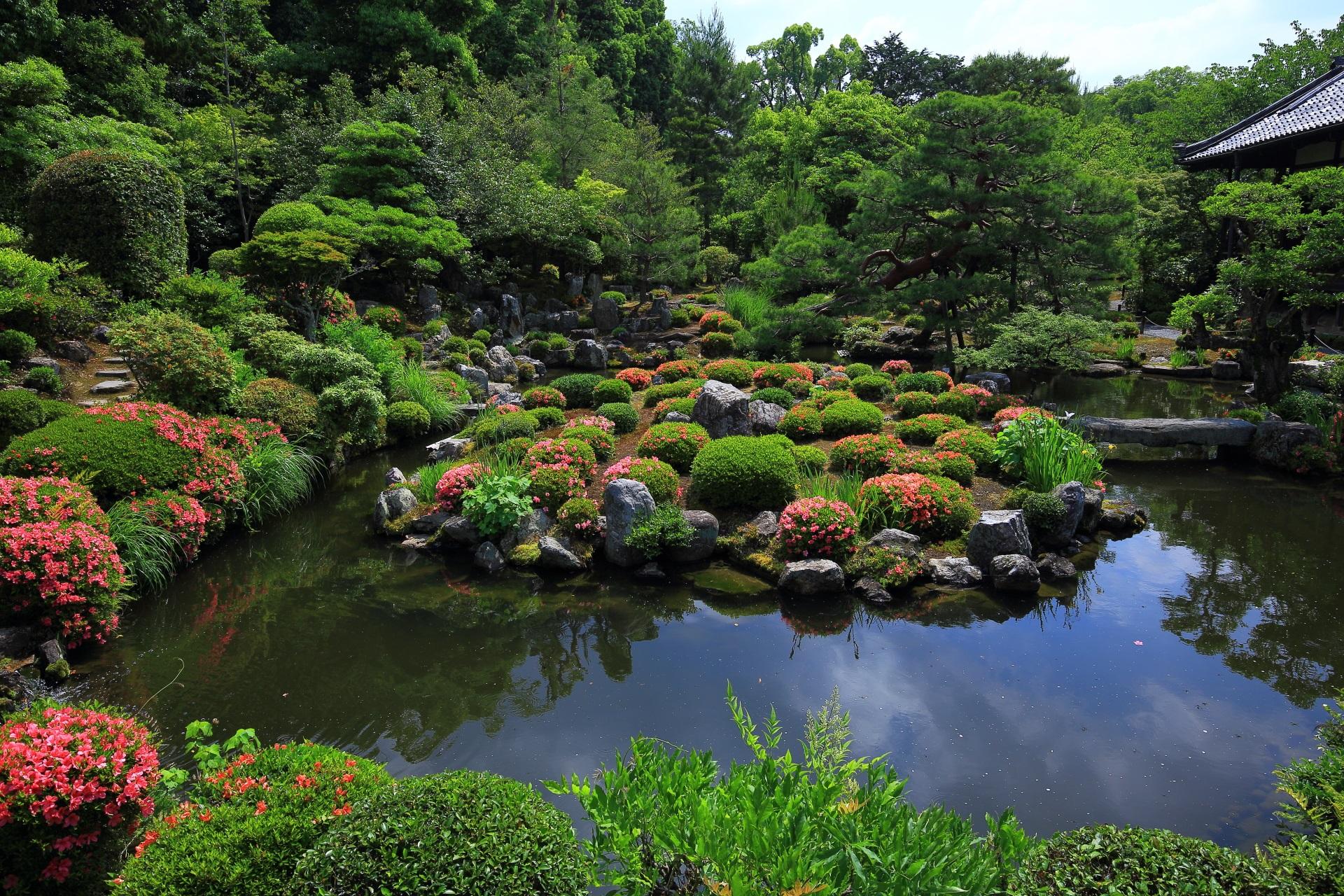 等持院の多彩な彩りにつつまれた華やかな水辺の景色