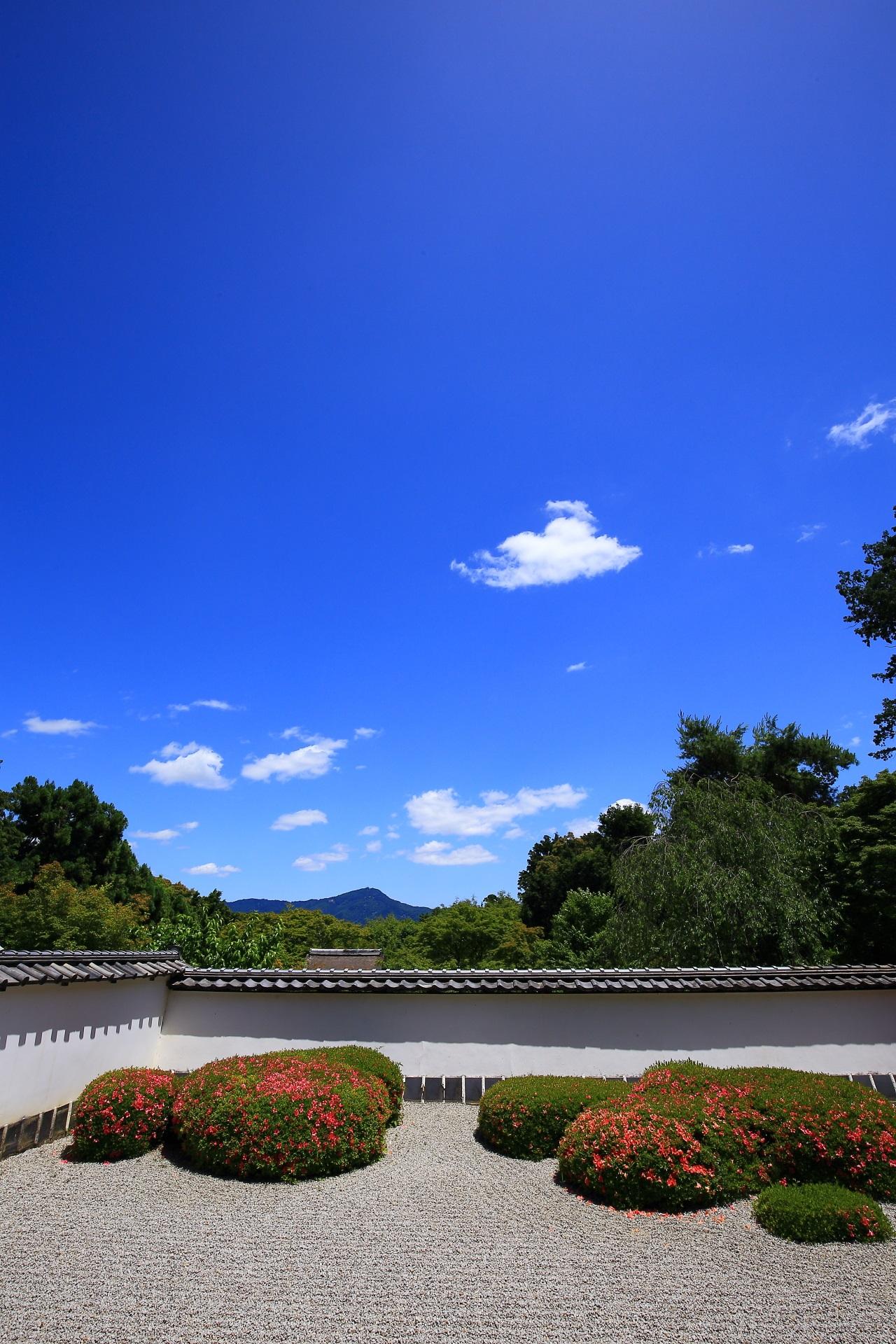庭園の一部となる綺麗な比叡山と美しい青空