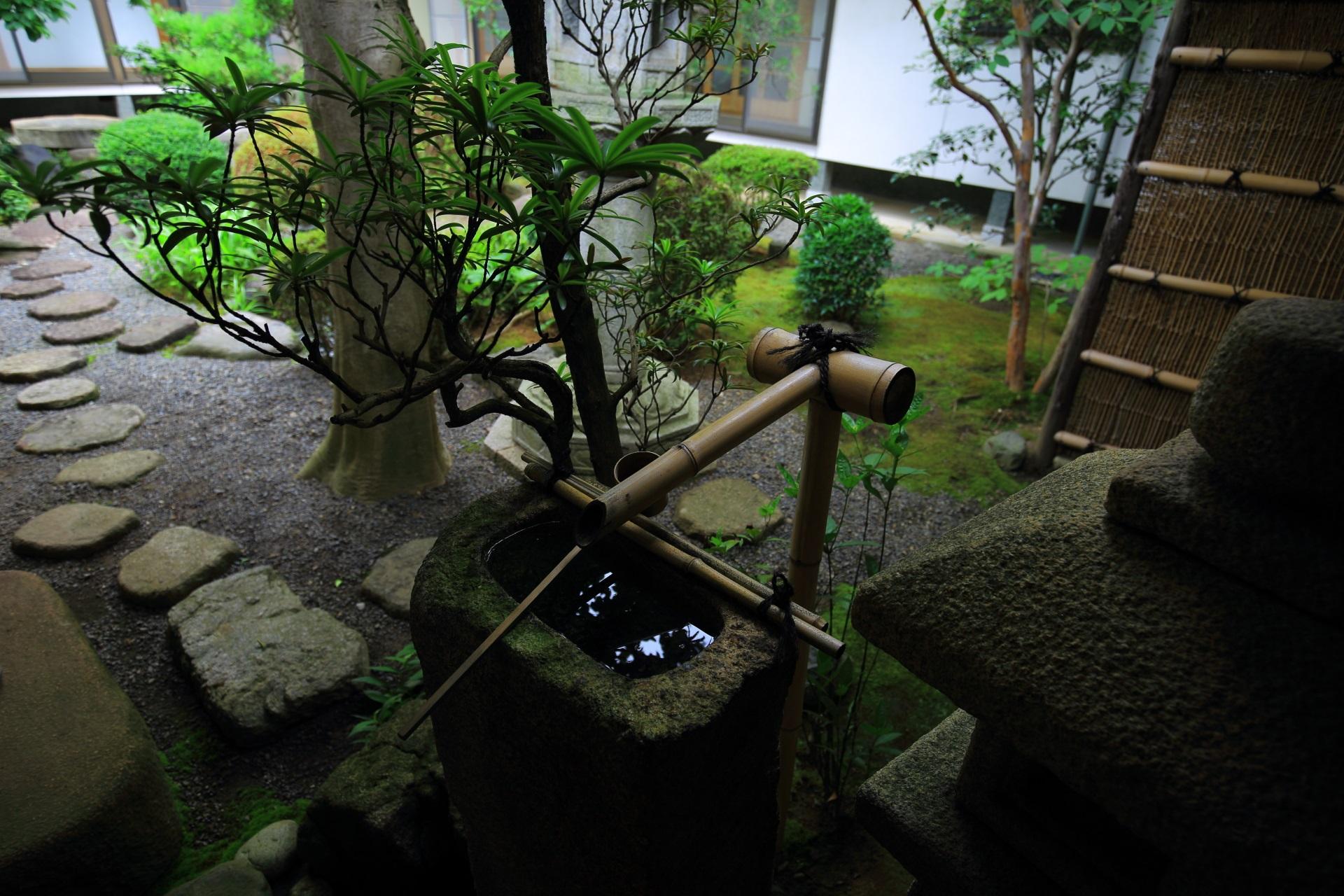 妙連寺の中庭と手水鉢