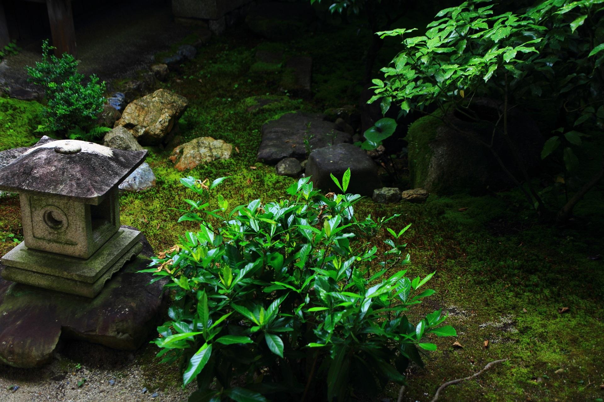 庭園の緑が美しい本法寺(ほんぽうじ)