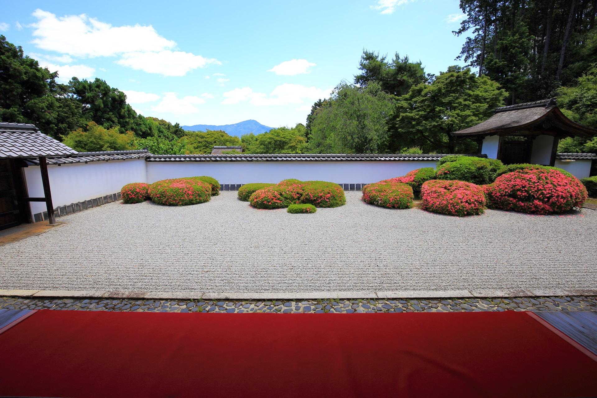 赤い絨毯とサツキが咲く正伝寺の枯山水庭園