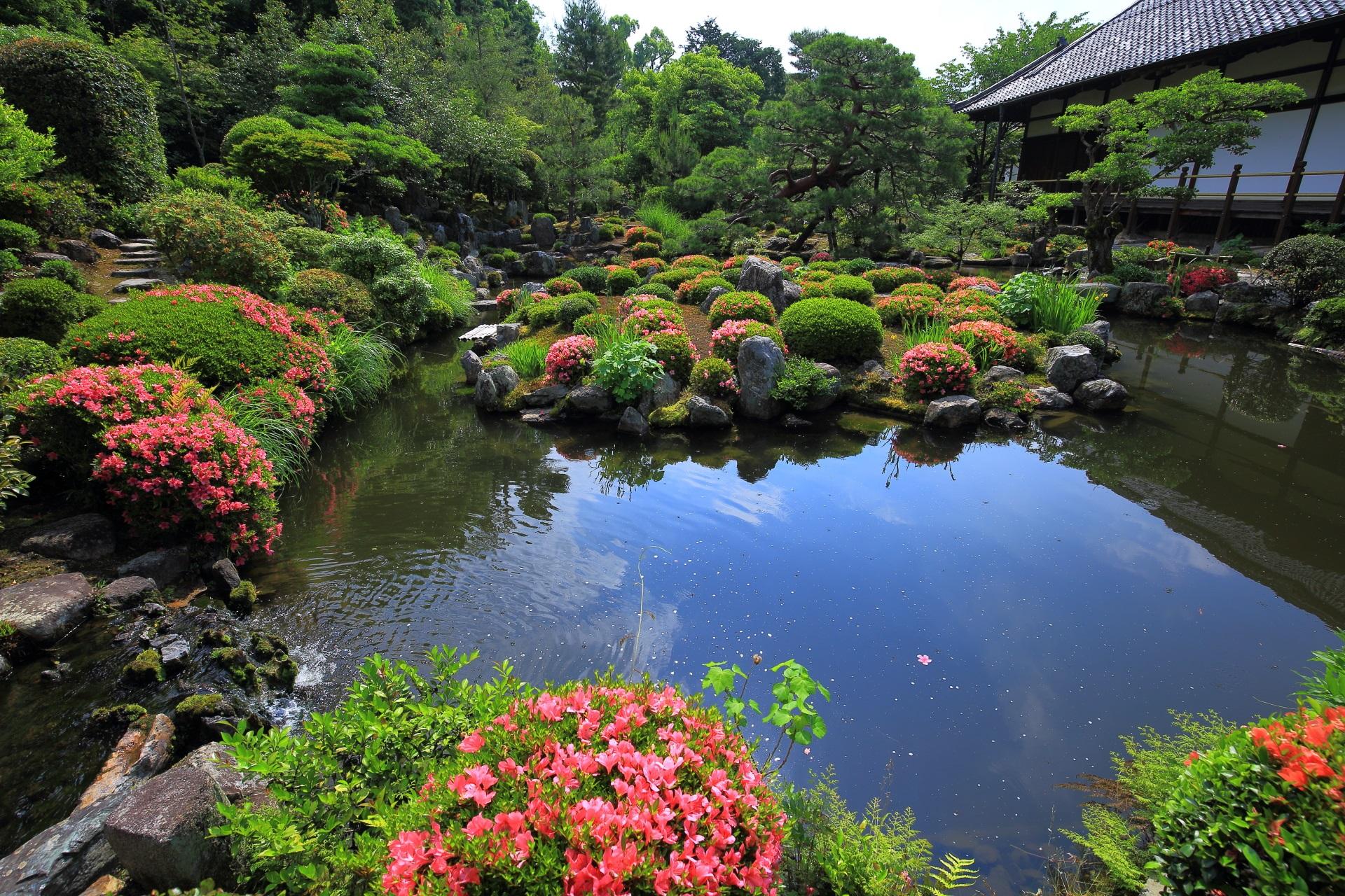 違った雰囲気や情景を楽しめる芙蓉池のさつき