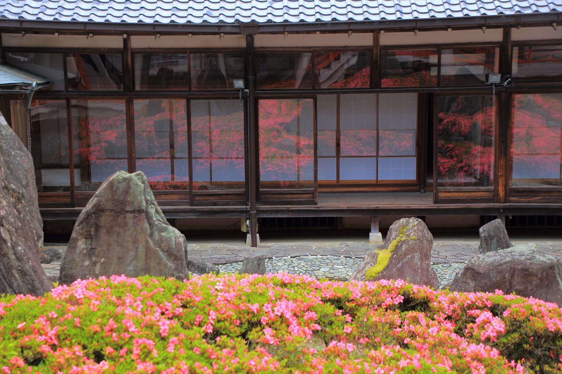 松尾大社のガラスに映るサツキ