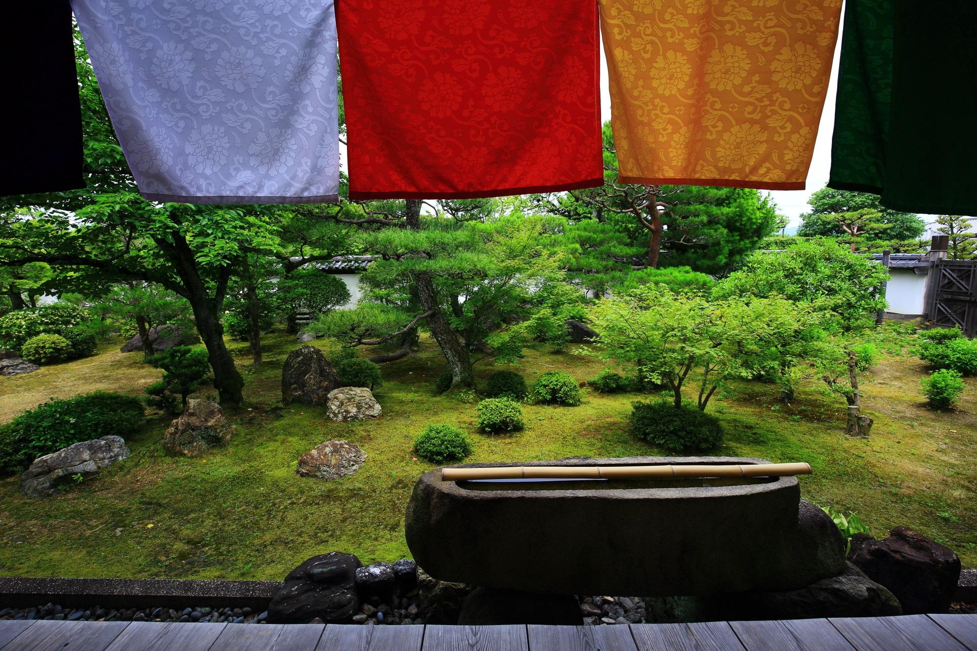 鮮やかな緑につつまれた講堂の庭園と手水鉢