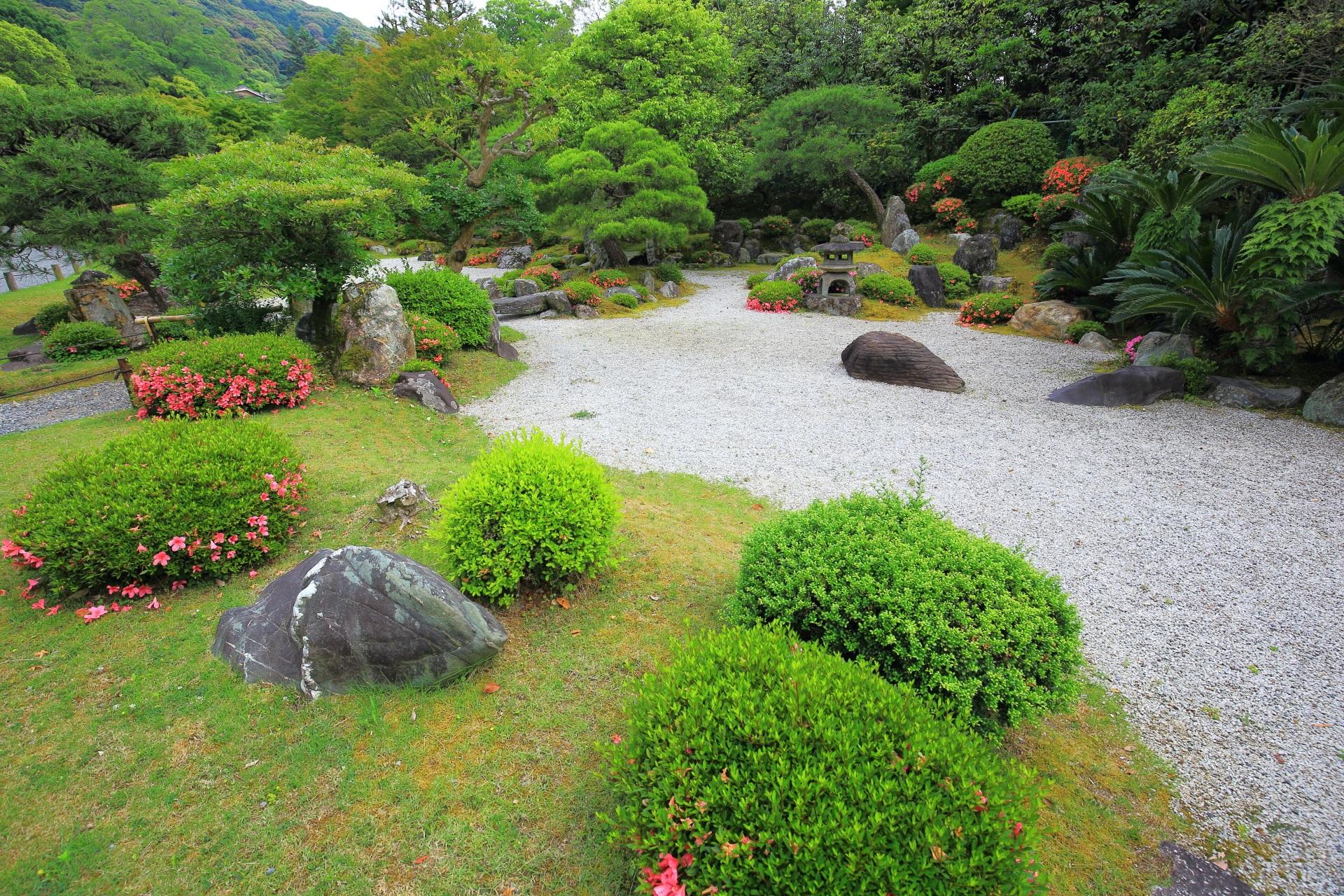 鮮やかなアクセントとなって庭園を彩るサツキ