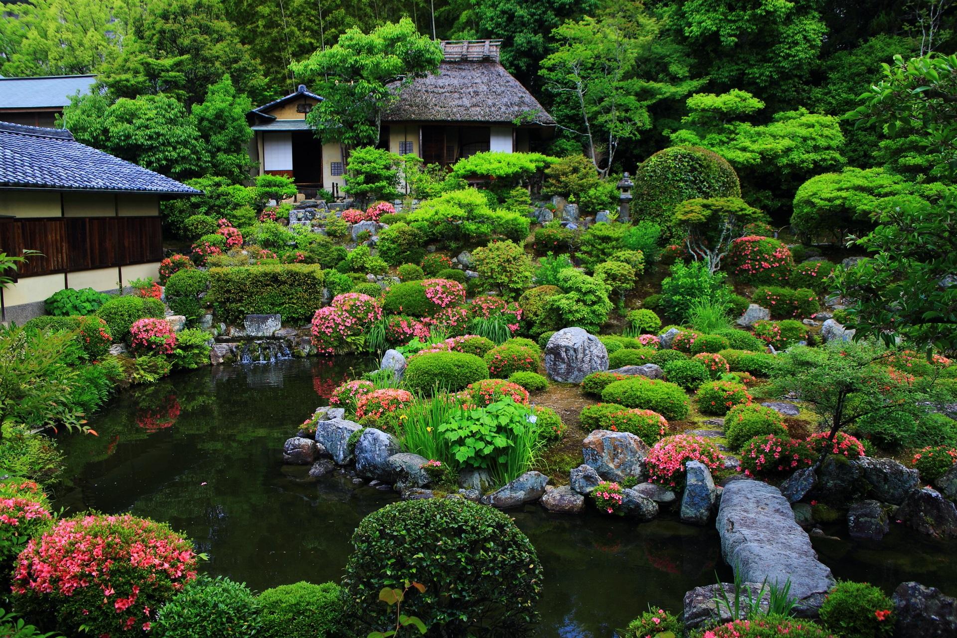 方丈側から眺めたサツキが見ごろの芙蓉池(ふようち)