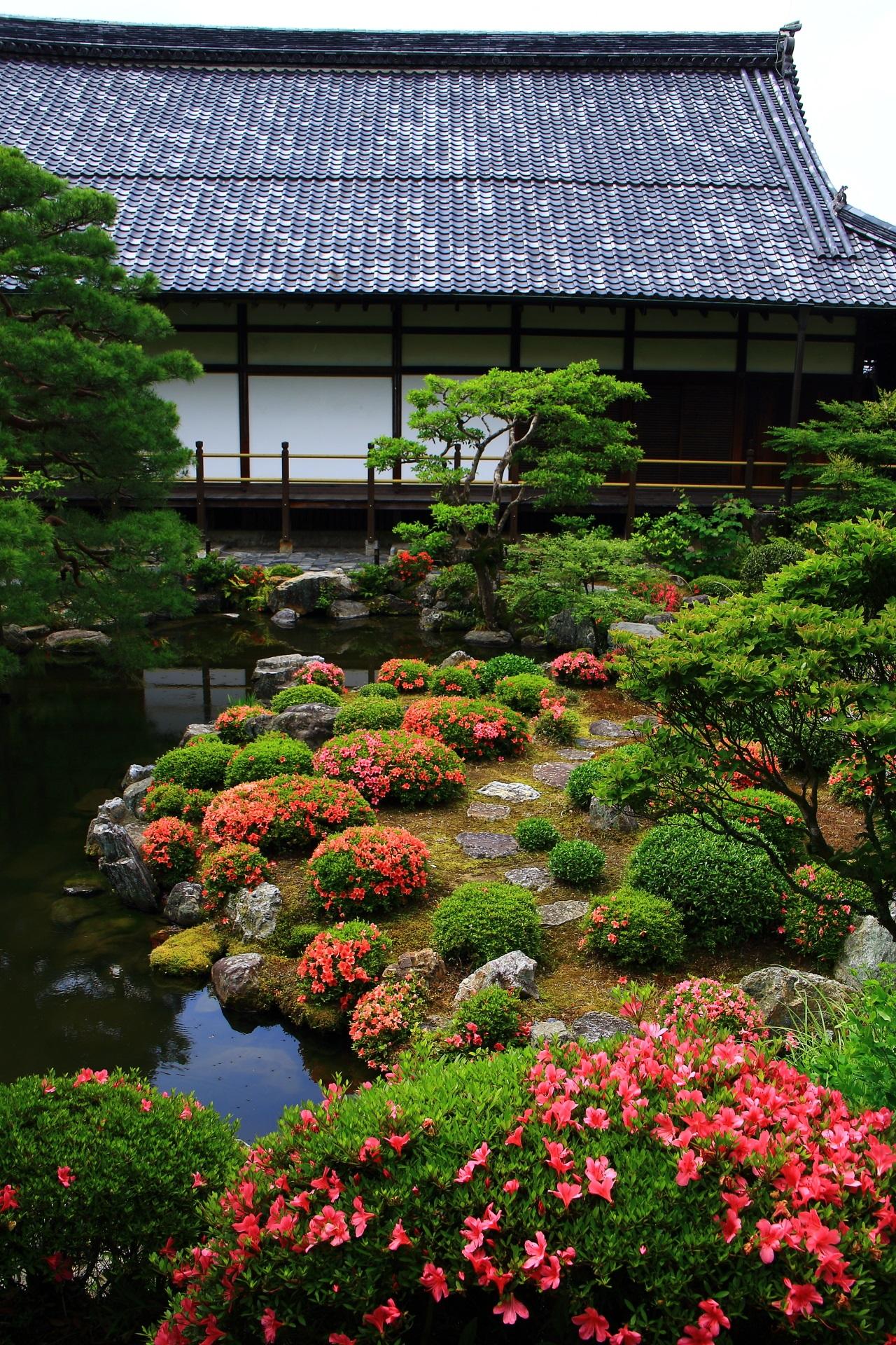 等持院の素晴らしすぎるサツキや庭園と春の情景