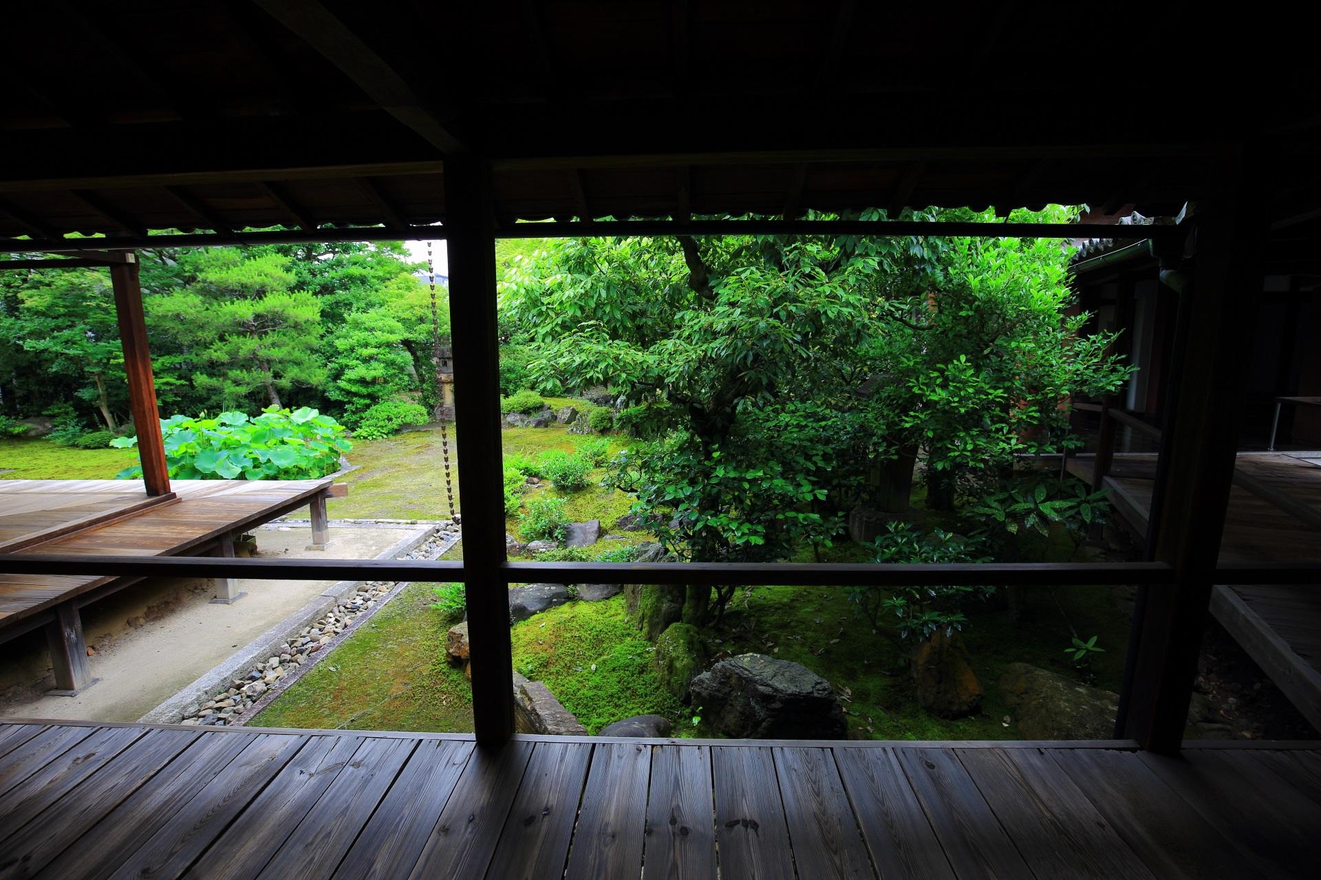 本法寺の回廊から見る巴の庭の築山