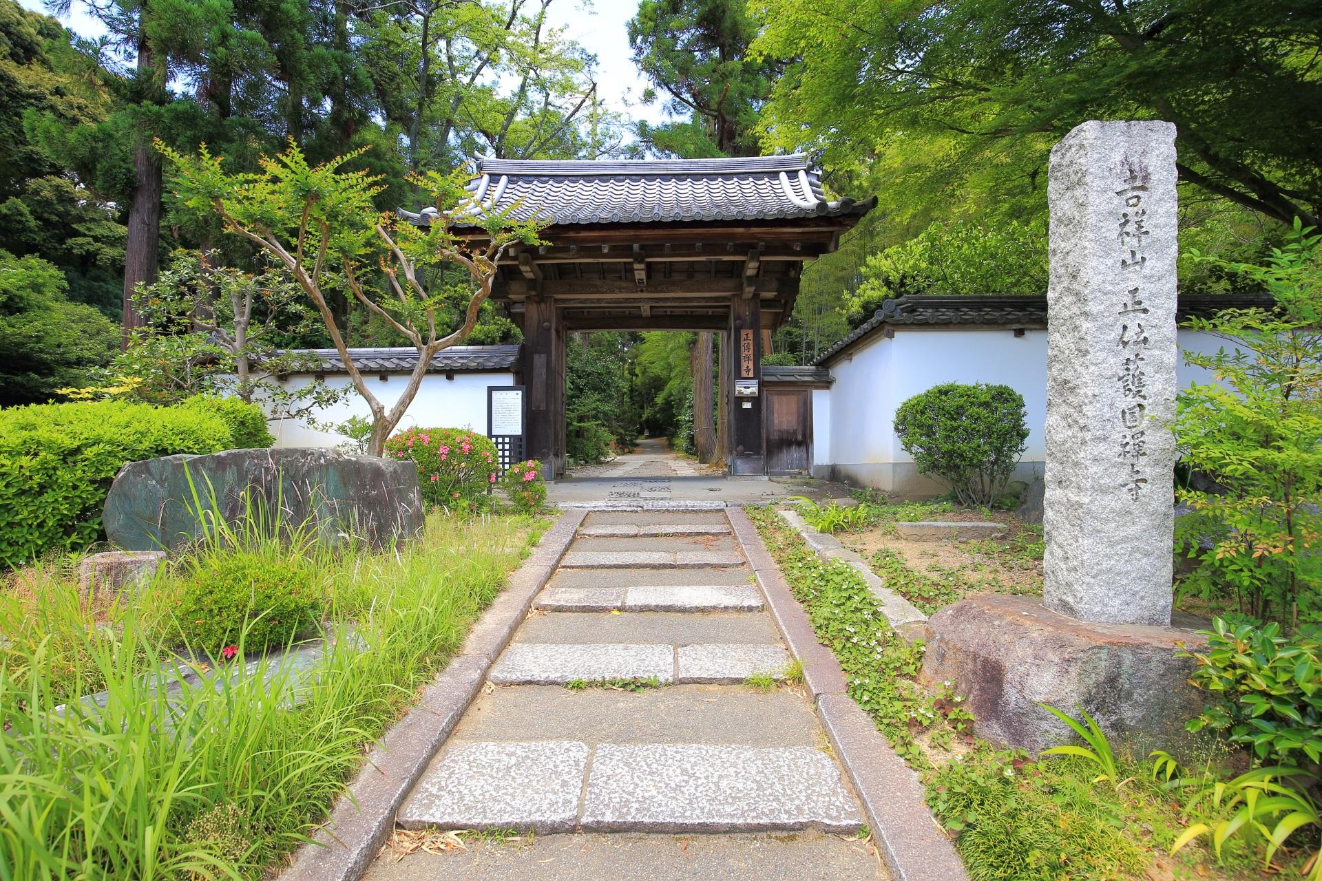正伝寺の緑につつまれた山門