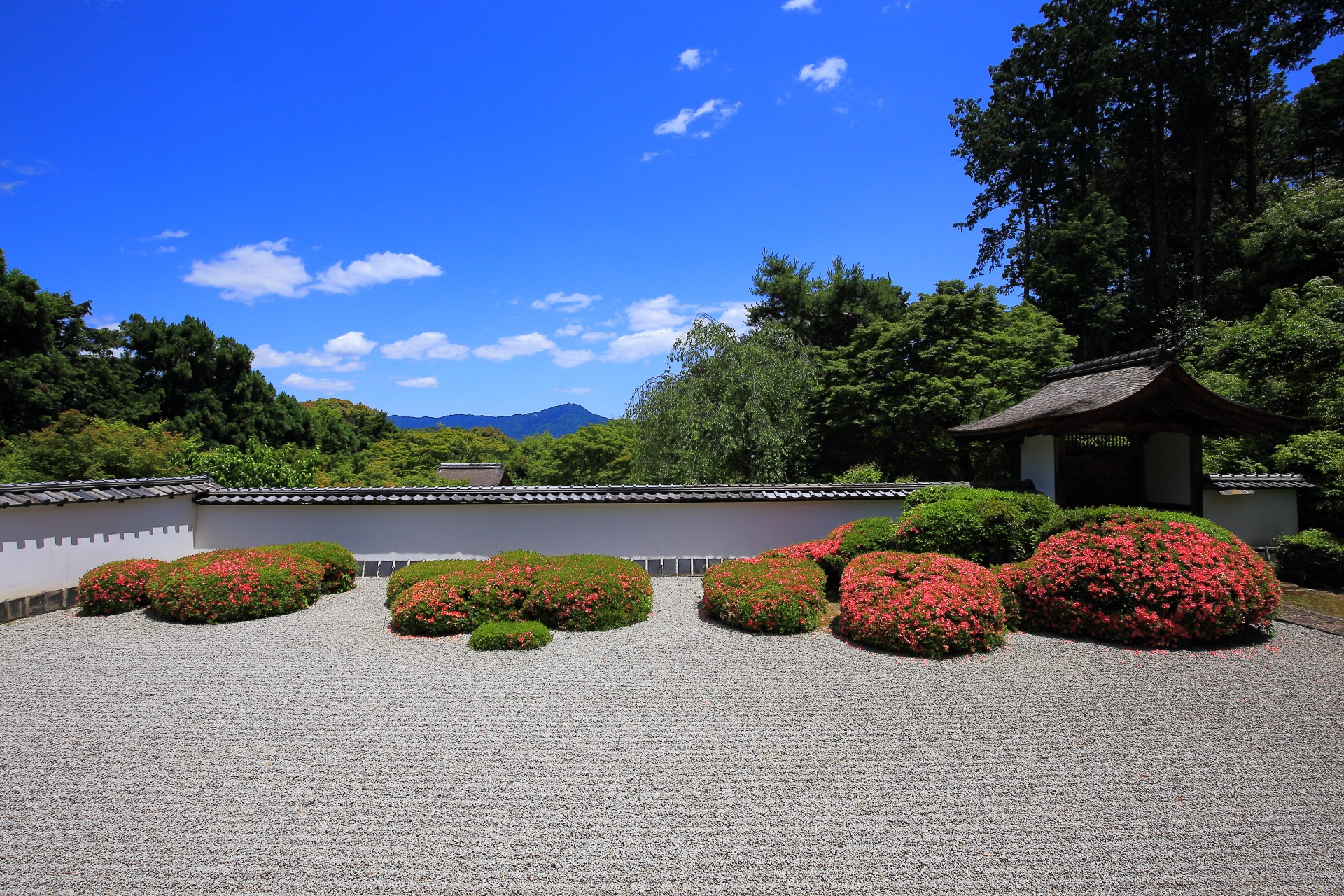 太陽が雲から出てきて日差しが強くなると煌びやかな庭園となる正伝寺(しょうでんじ)