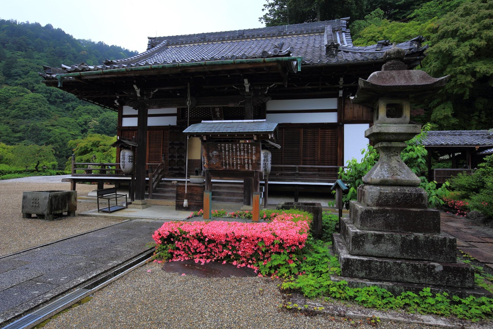 サツキの花がアクセントになる善峯寺の釈迦堂