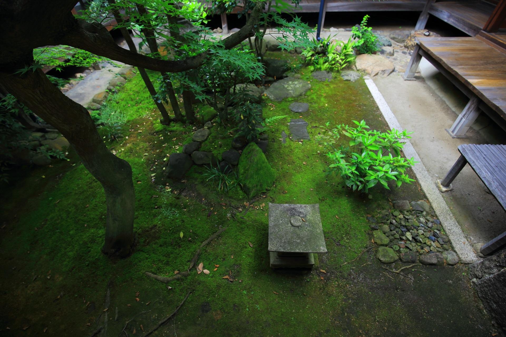 本法寺の蹲の庭