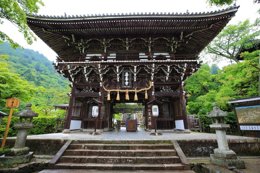 初夏の緑につつまれた善峯寺の山門