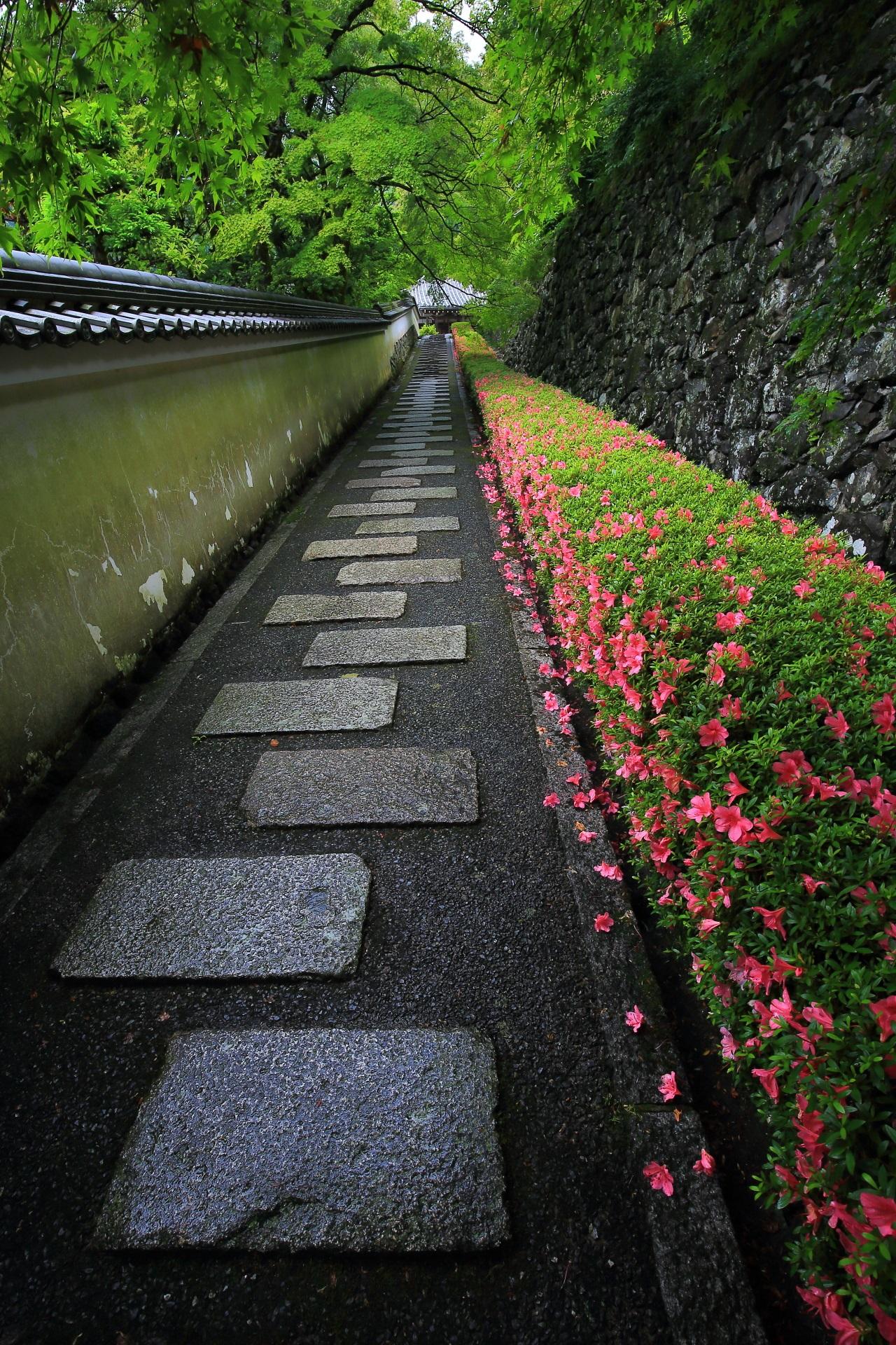 風情たっぷりの両横の土塀と石垣や石の長い参道と奥の阿弥陀堂