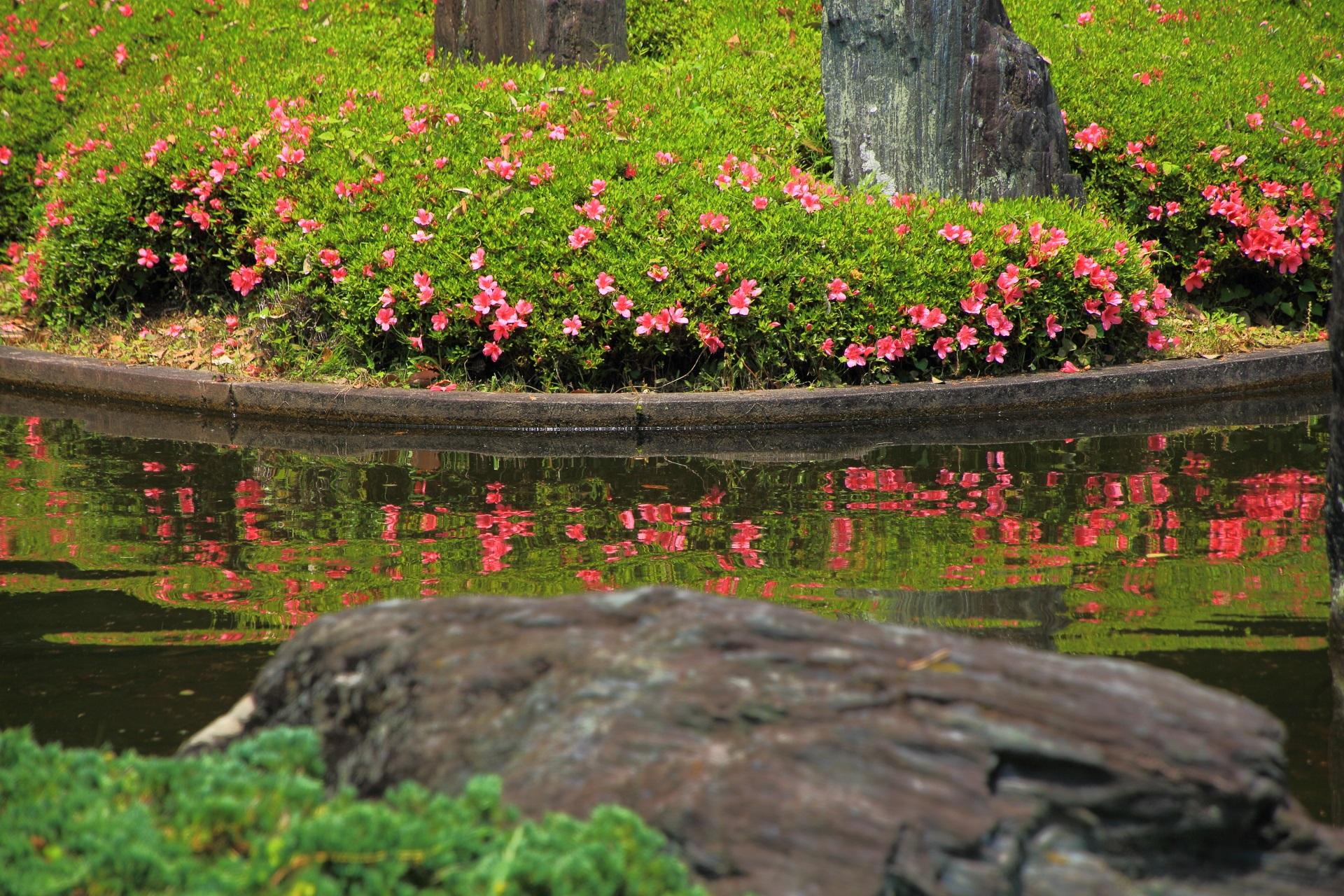柔らかさと力強さが融合した庭園の蓬莱の庭