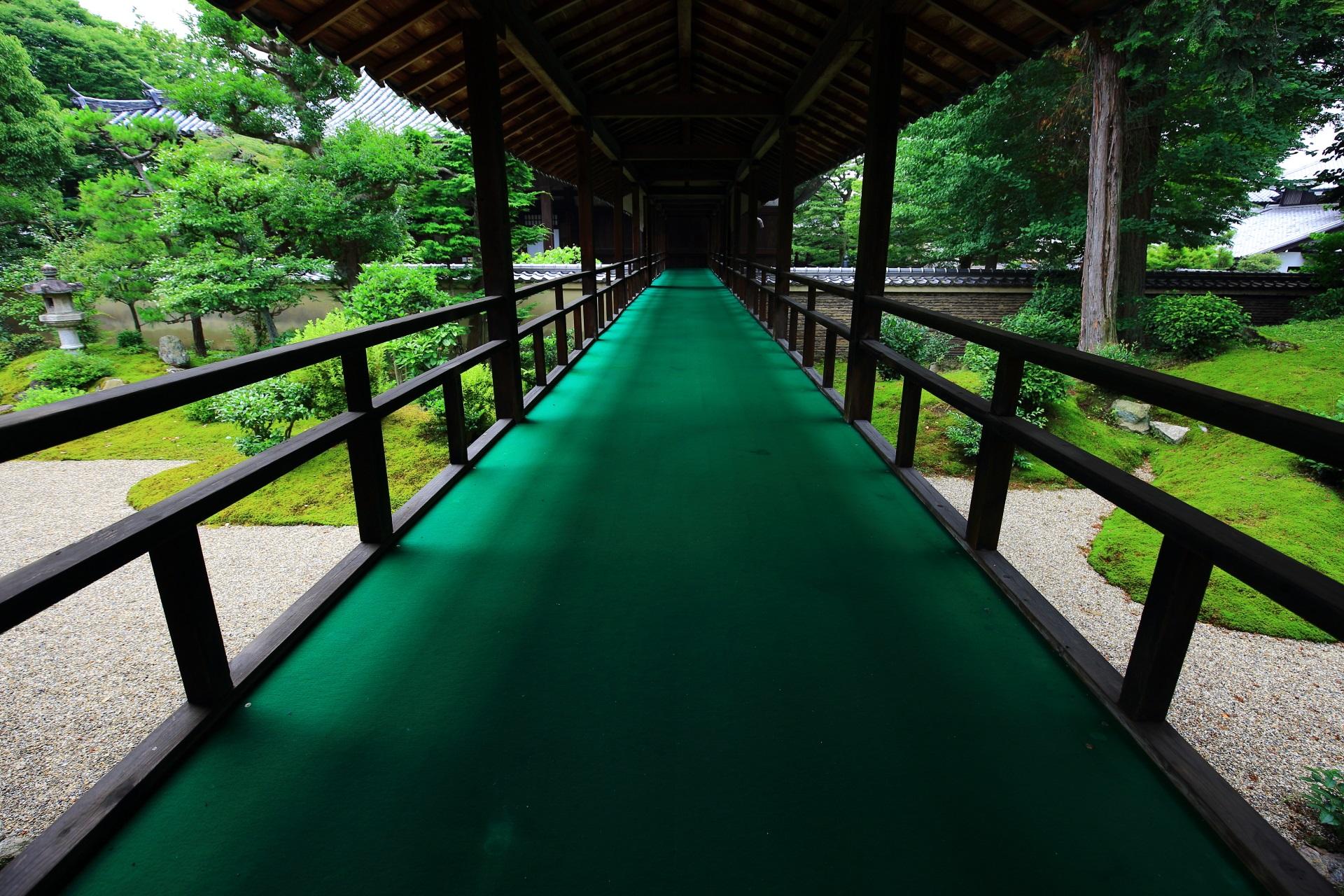 立本寺の客殿から本堂へ続く回廊