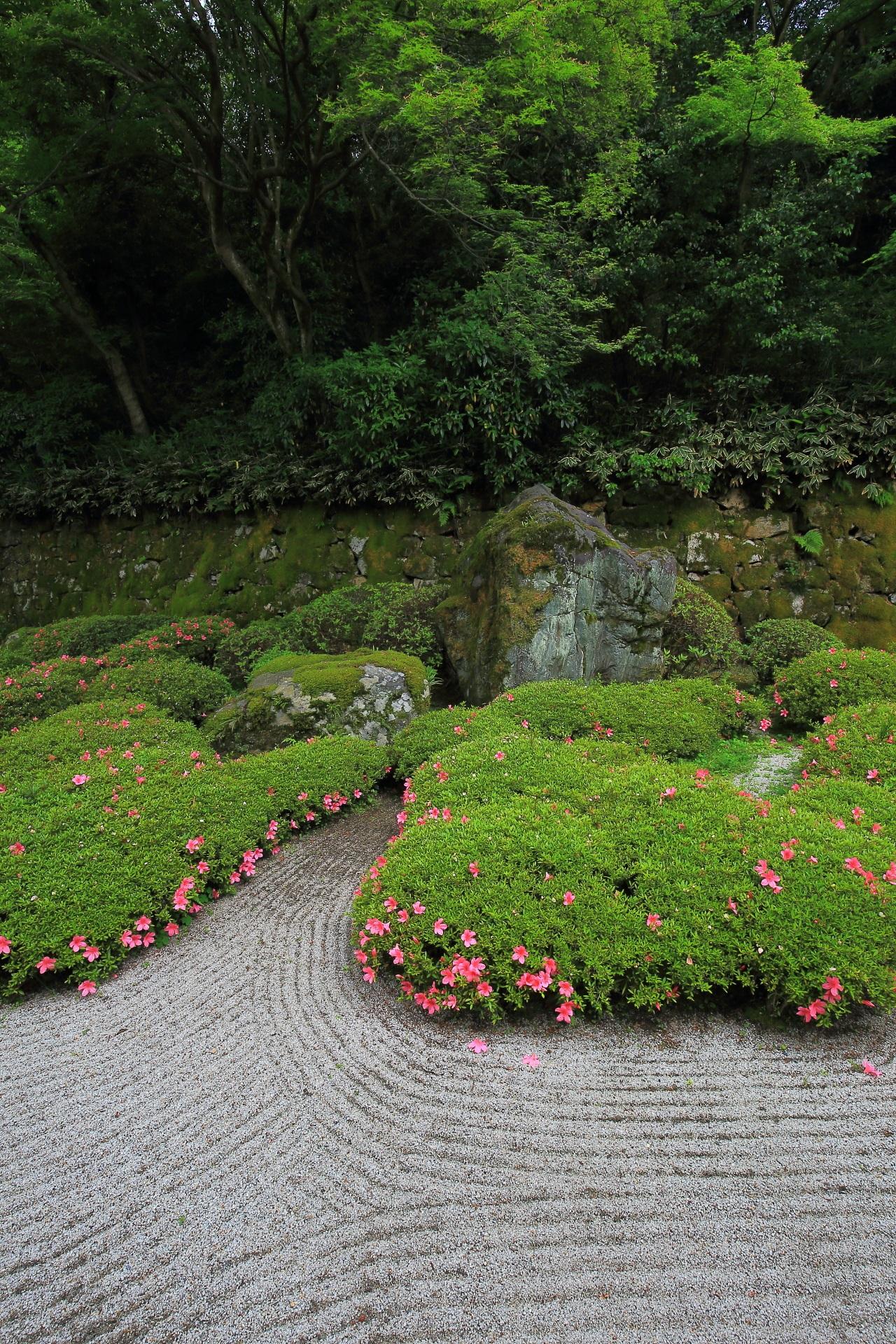 春が彩る知恩院の優雅で芸術的な庭園