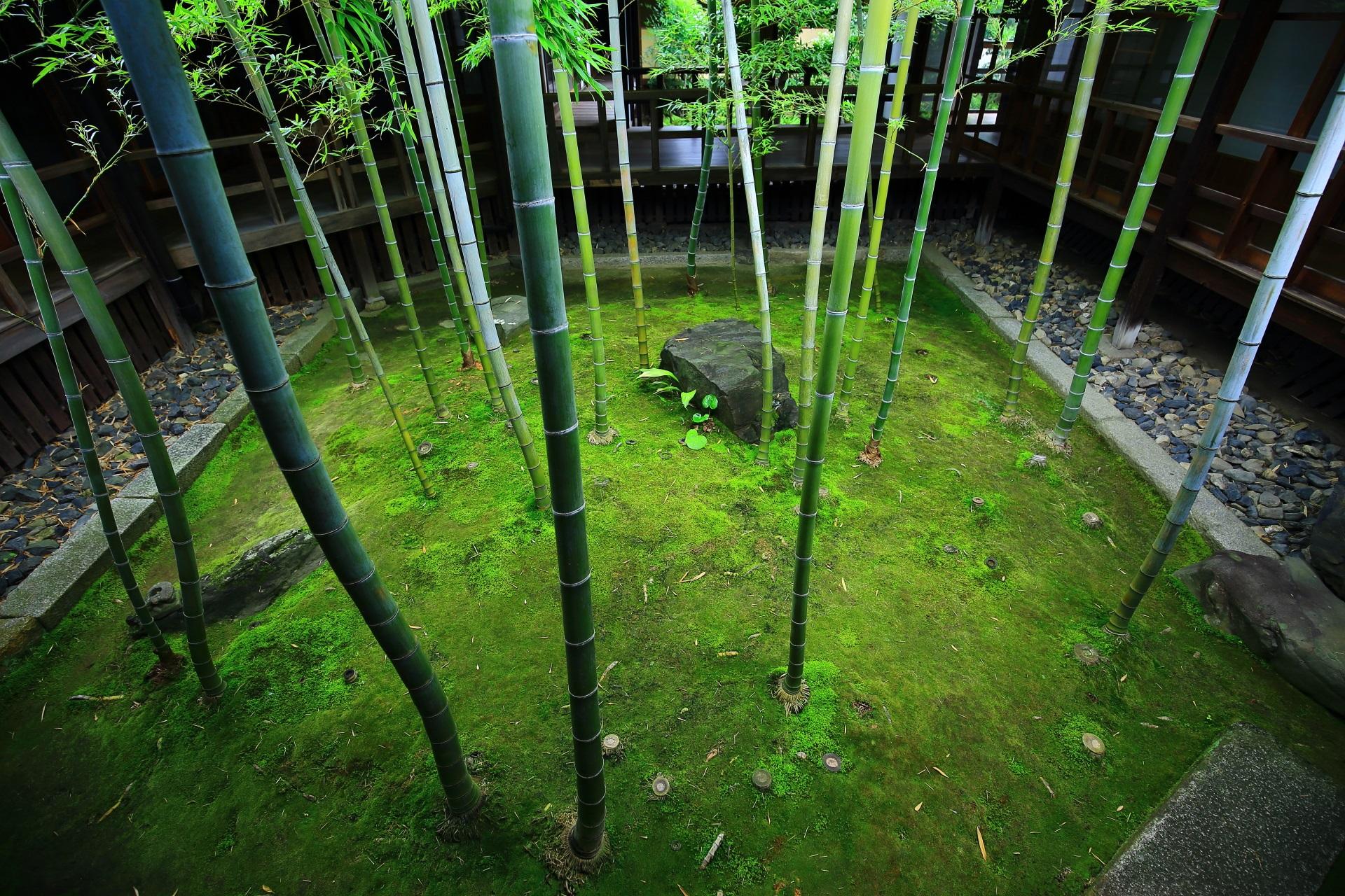 妙顕寺 庭園 美しさと風情のある名庭と彩り